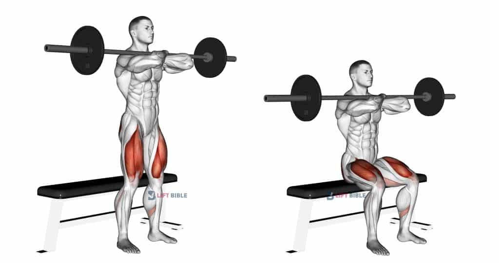 Barbell Bench Front Squat thighs