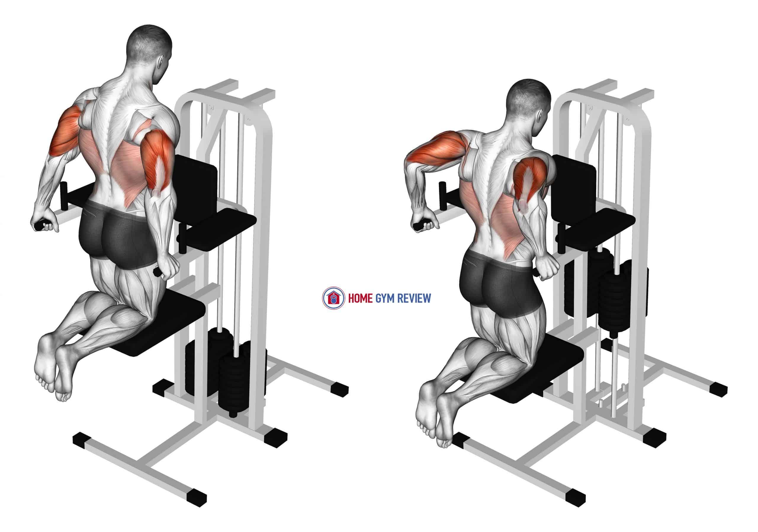 Assisted Triceps Dip (kneeling)
