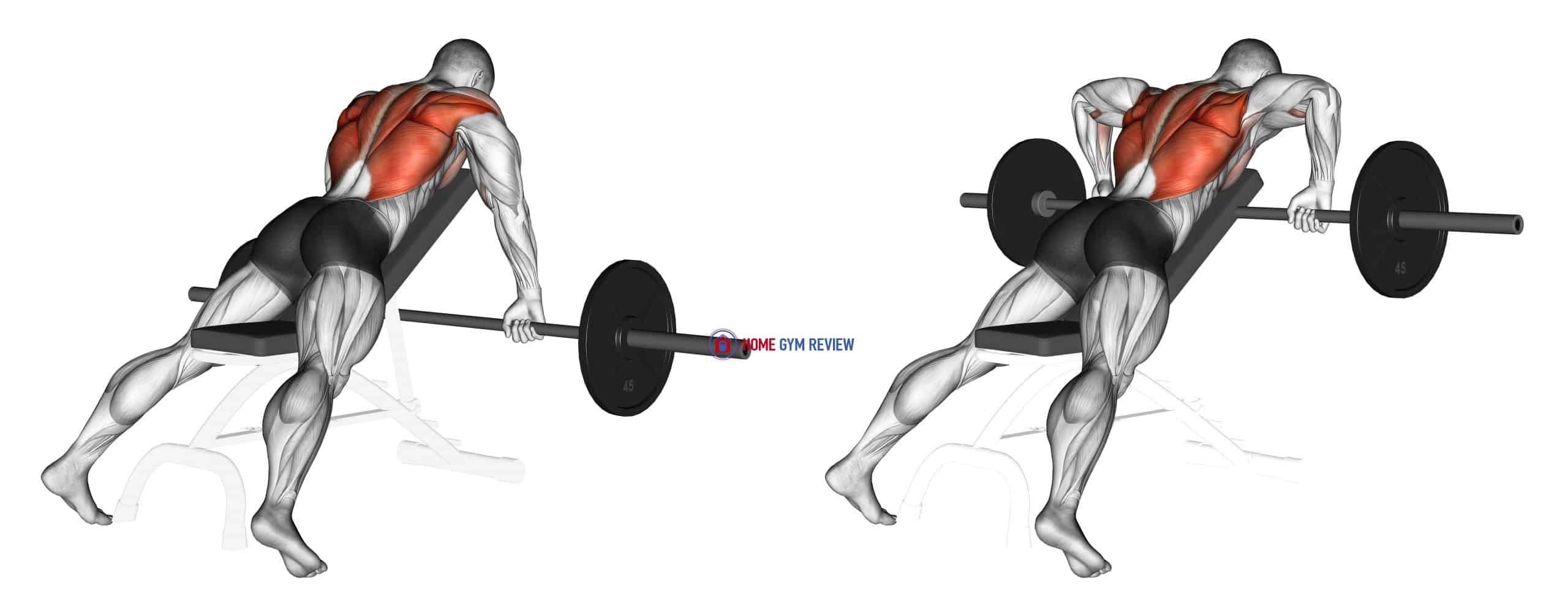 Barbell Incline Row