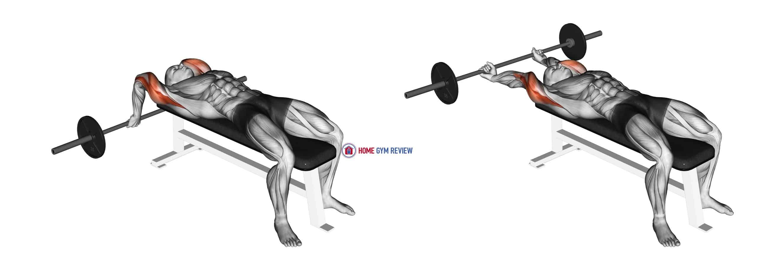 Barbell Lying Close-grip Triceps Extension