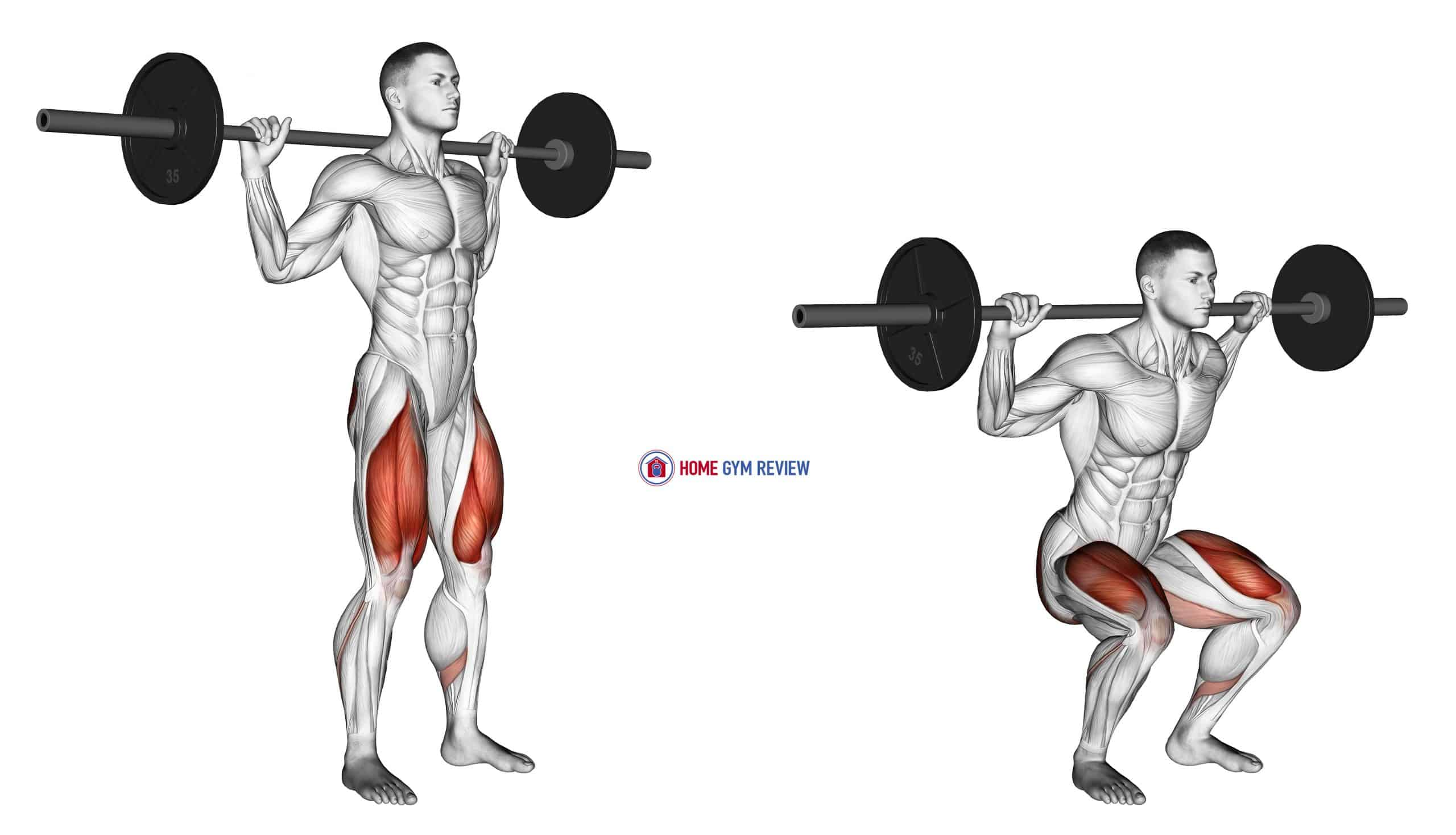 Barbell Narrow Stance Squat
