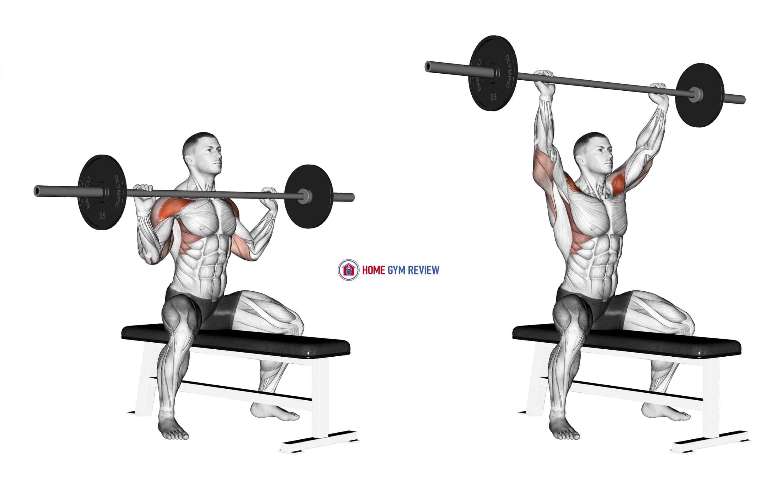 Barbell Seated Overhead Press