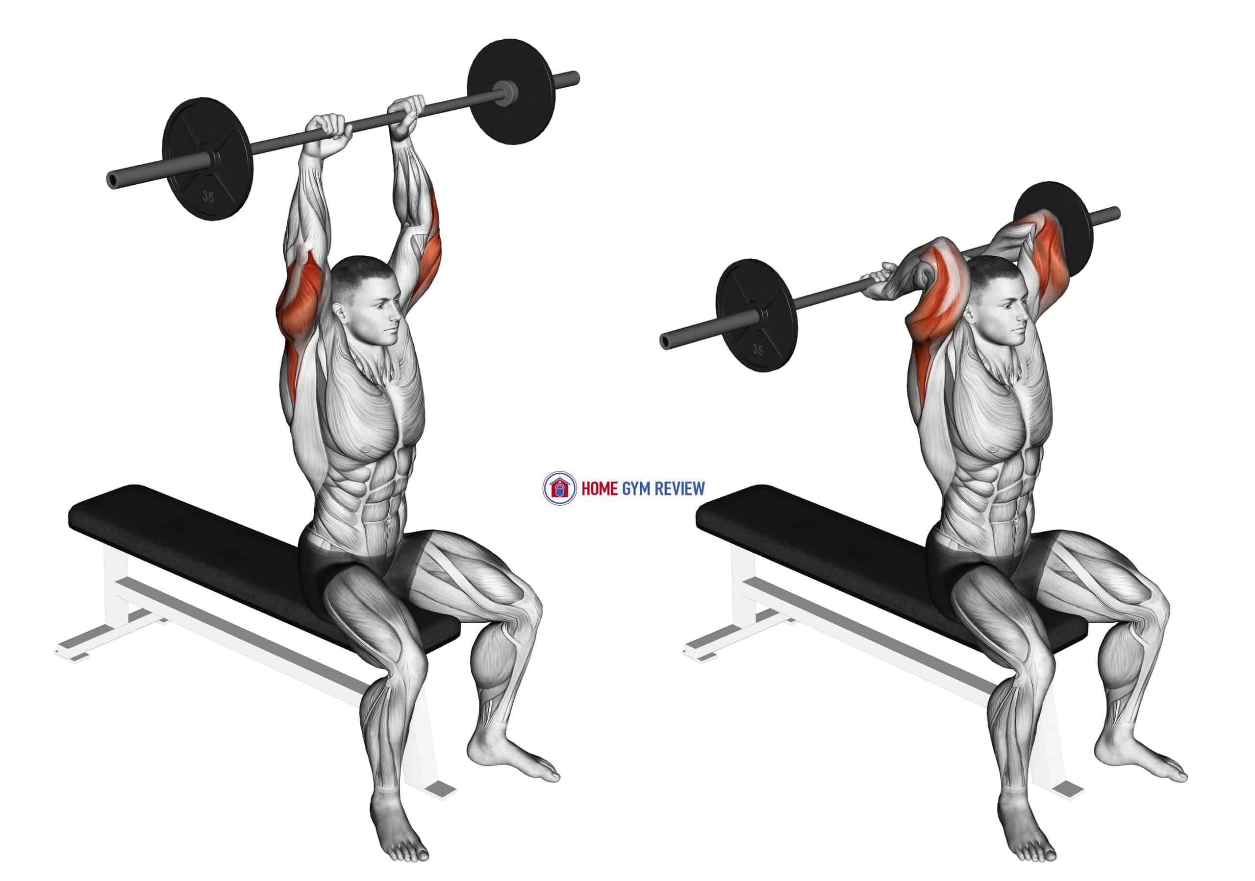 Barbell Seated Overhead Triceps Extension