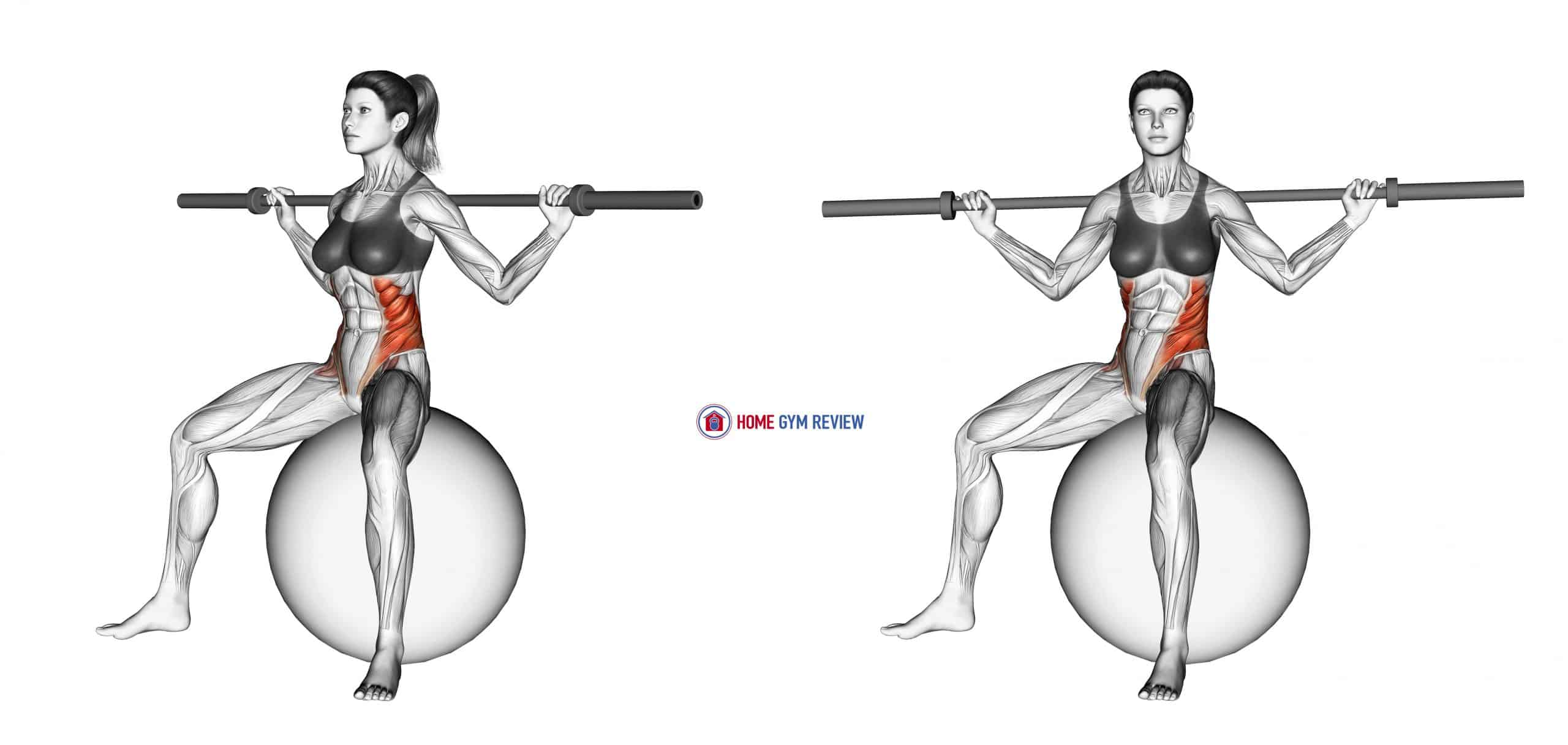 Barbell Seated Twist (on stability ball)