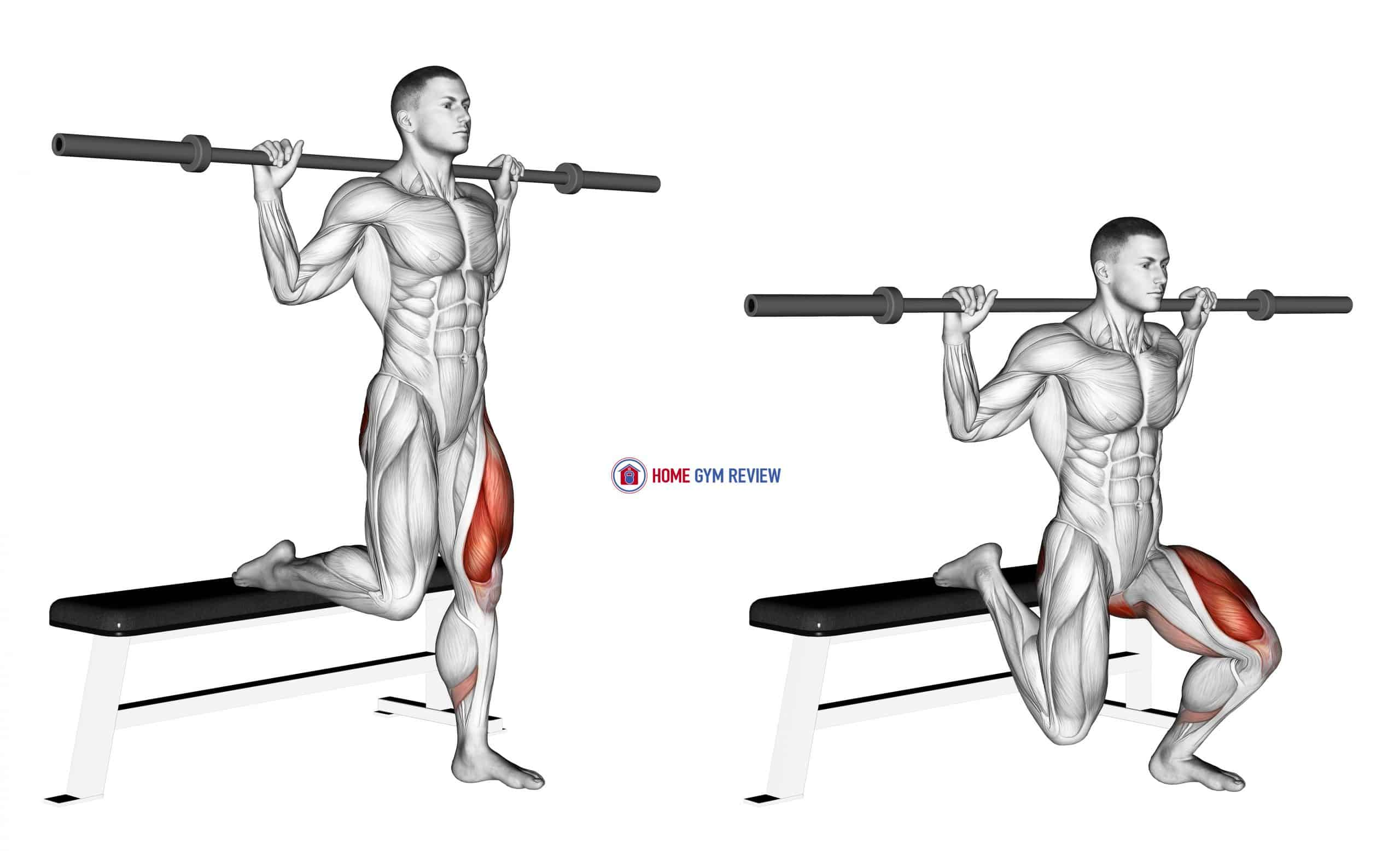 Barbell Single Leg Split Squat