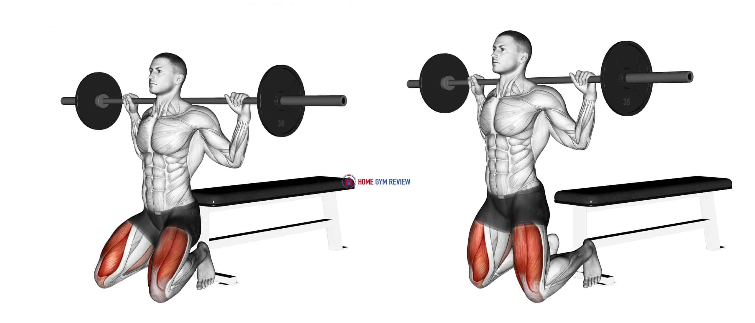 Barbell Squat (on knees)