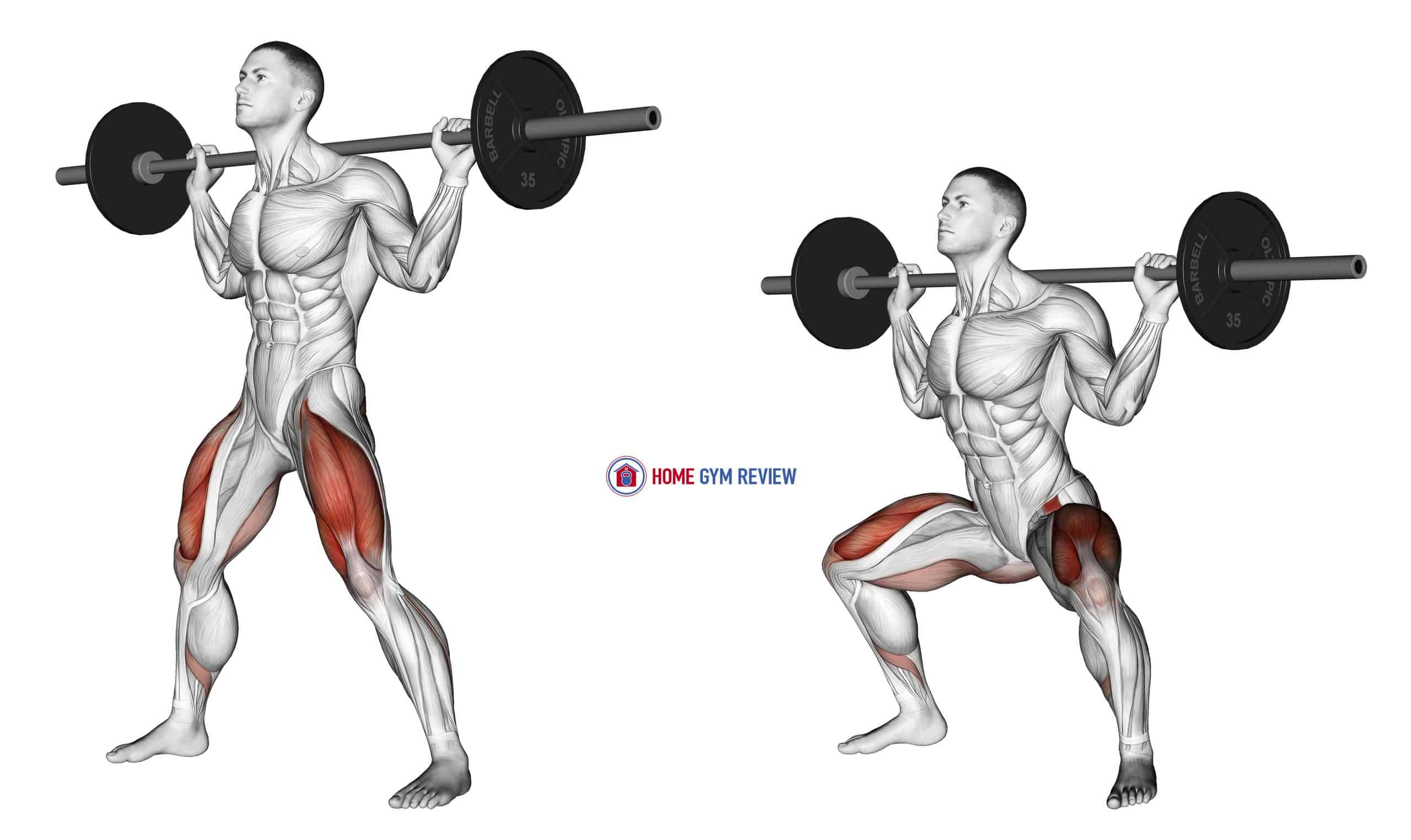 Barbell Wide Squat