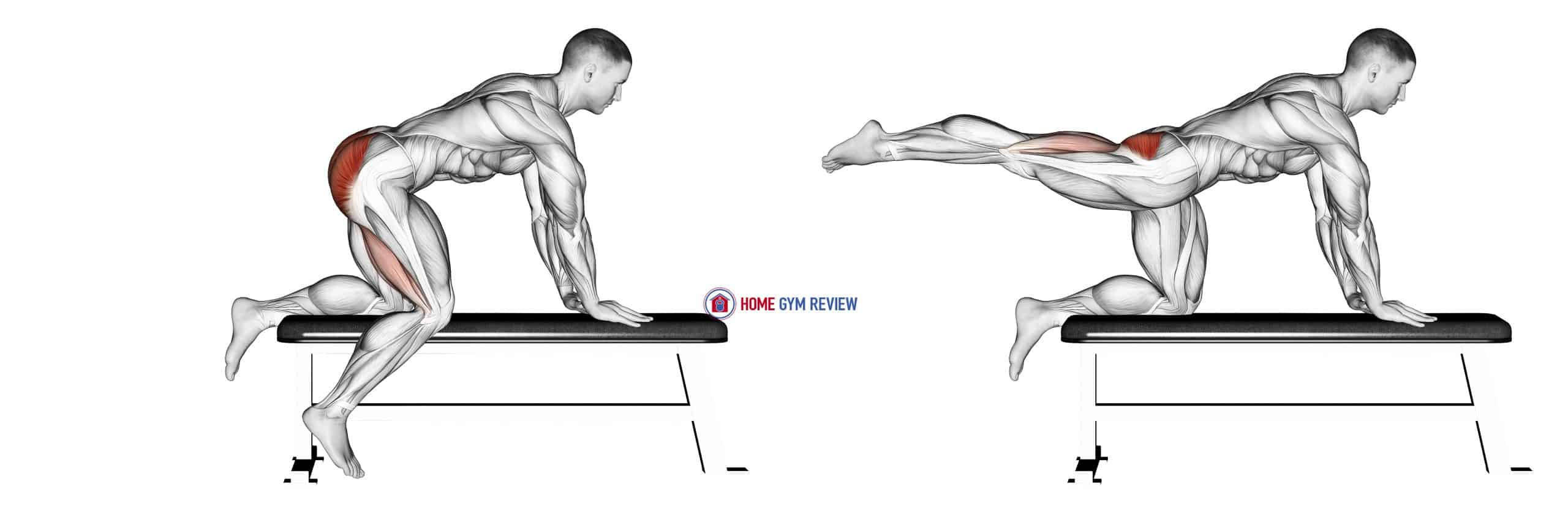 Bench Hip Extension