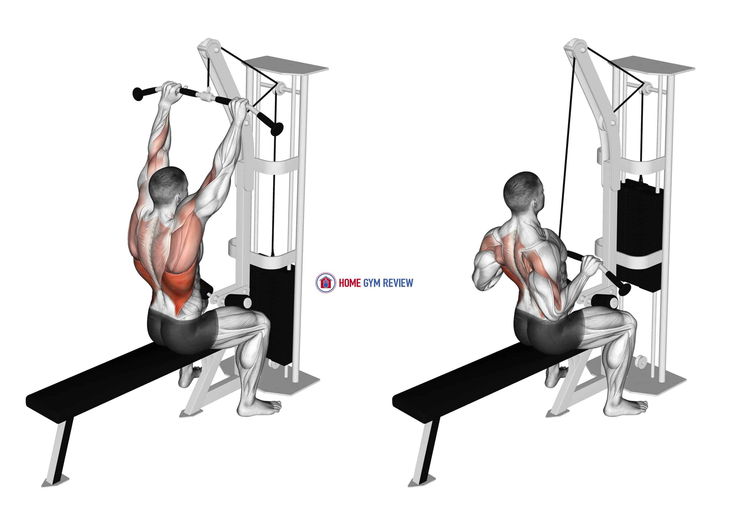 Cable Bar Lateral Pulldown
