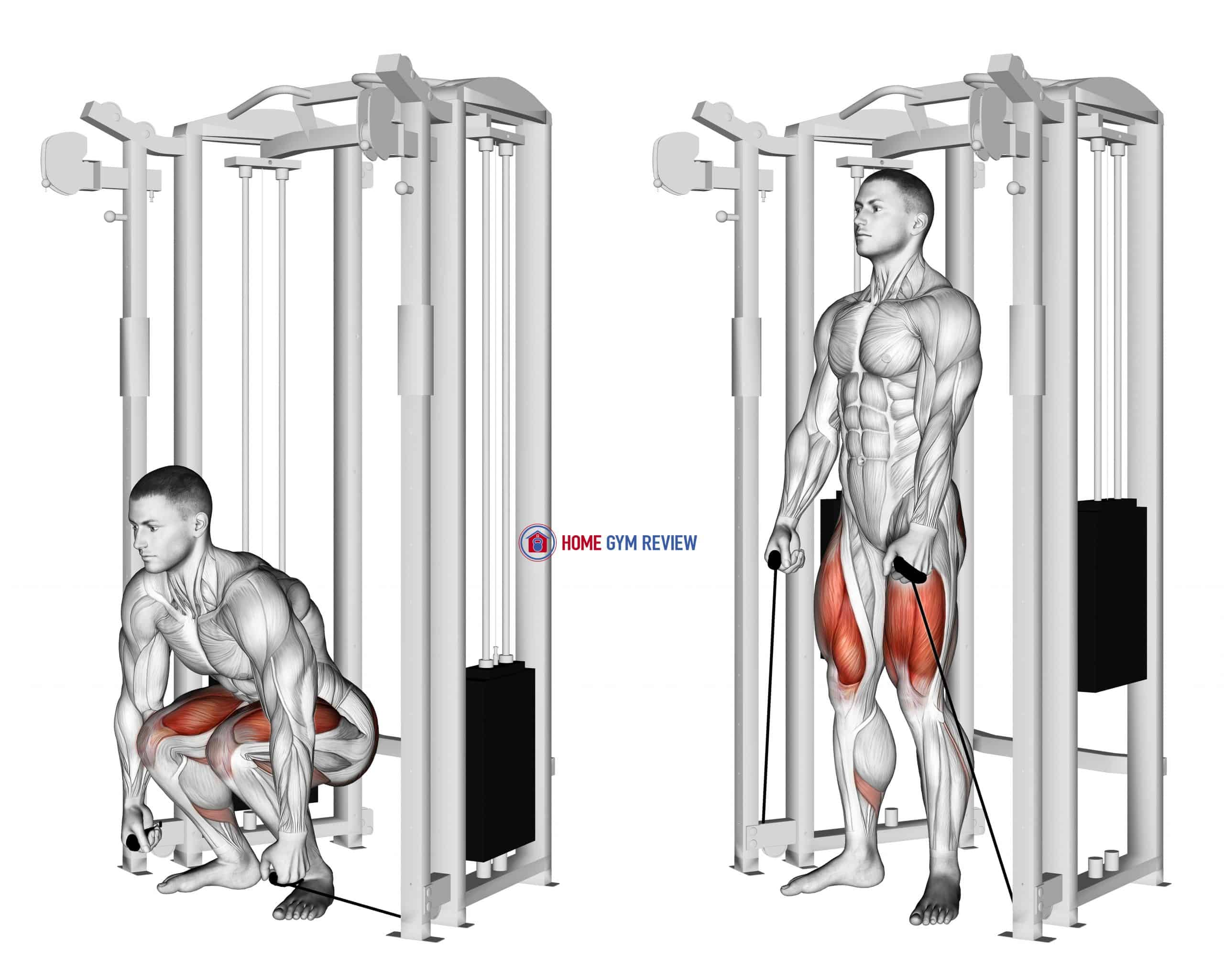 Cable Deadlift