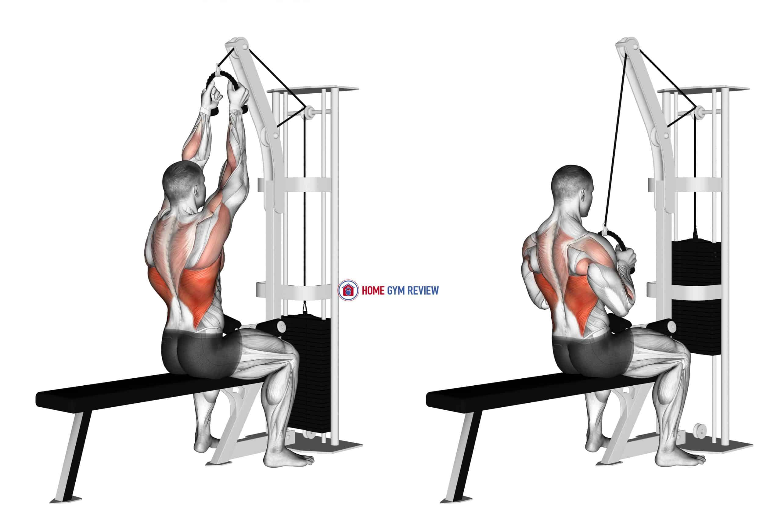 Cable Lateral Pulldown (with rope attachment)
