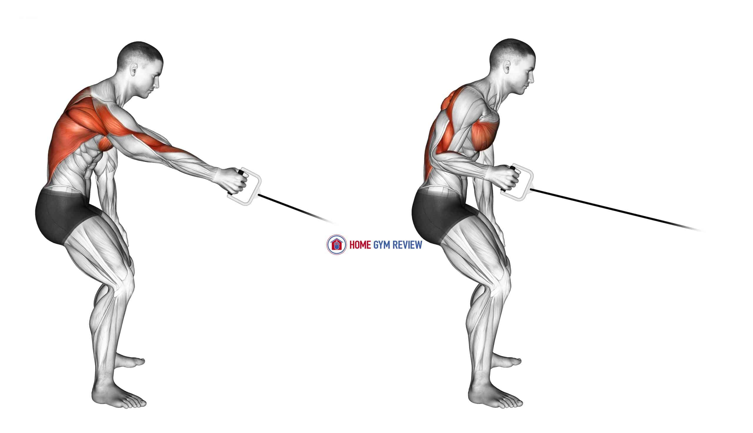 Cable One Arm Bent over Row