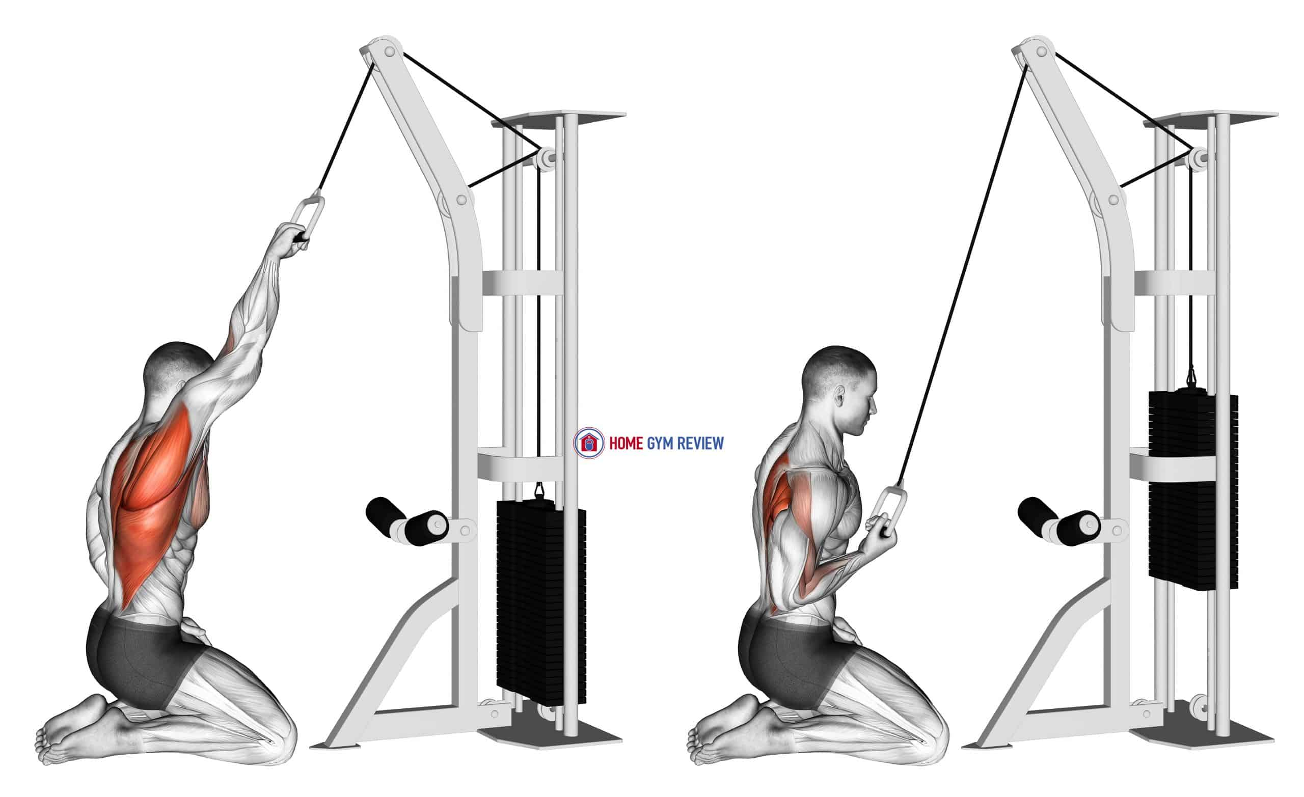 Cable One Arm Straight Back High Row (kneeling)