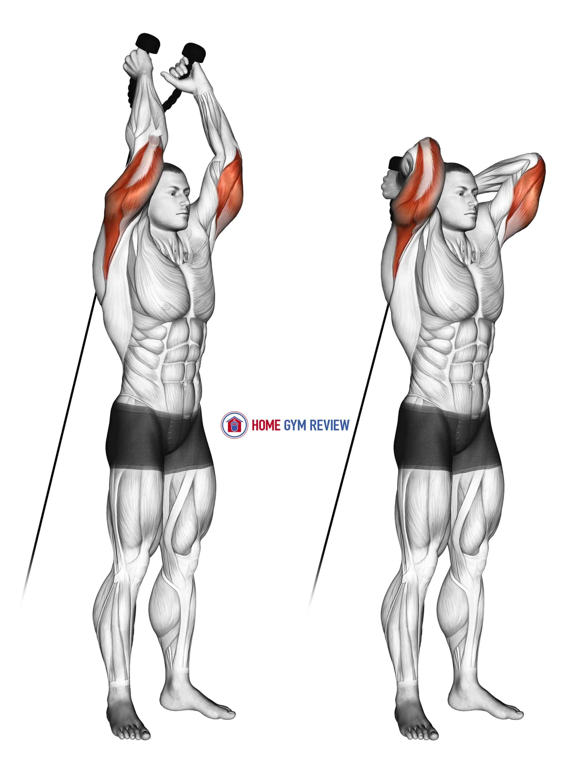 Cable Overhead Triceps Extension (rope attachment)