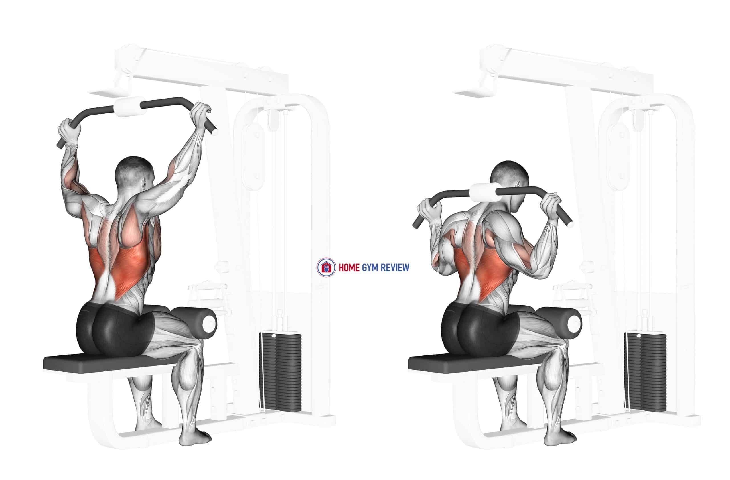 Cable Rear Pulldown