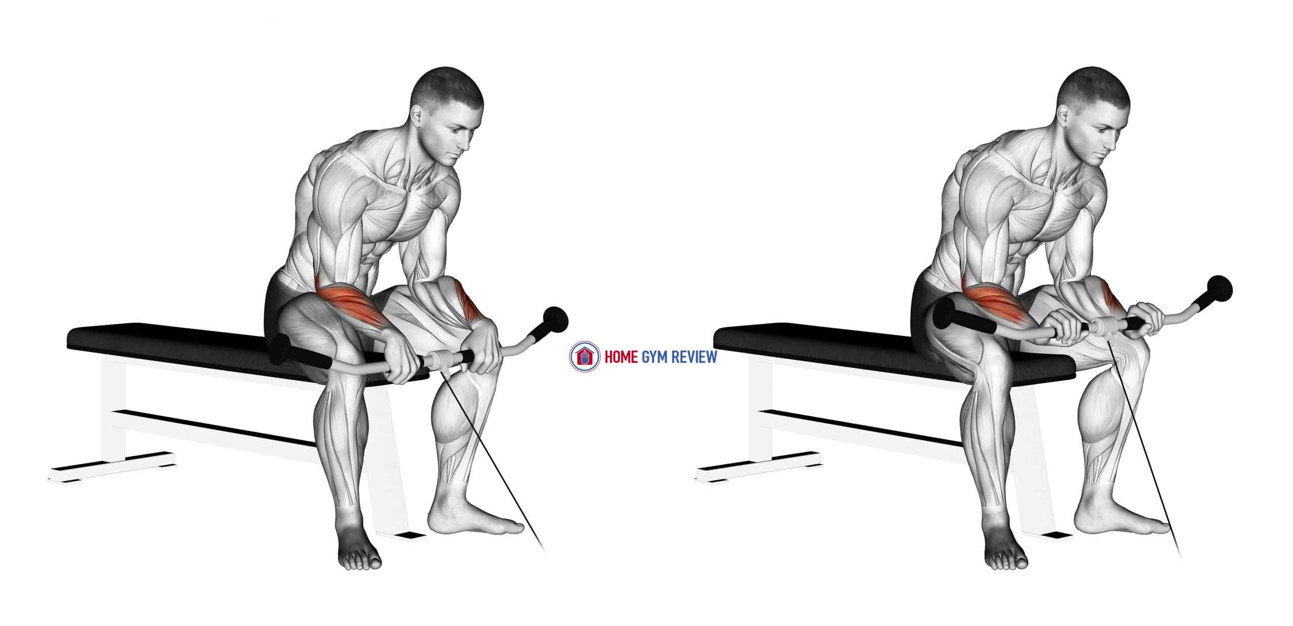 Cable Reverse Wrist Curl