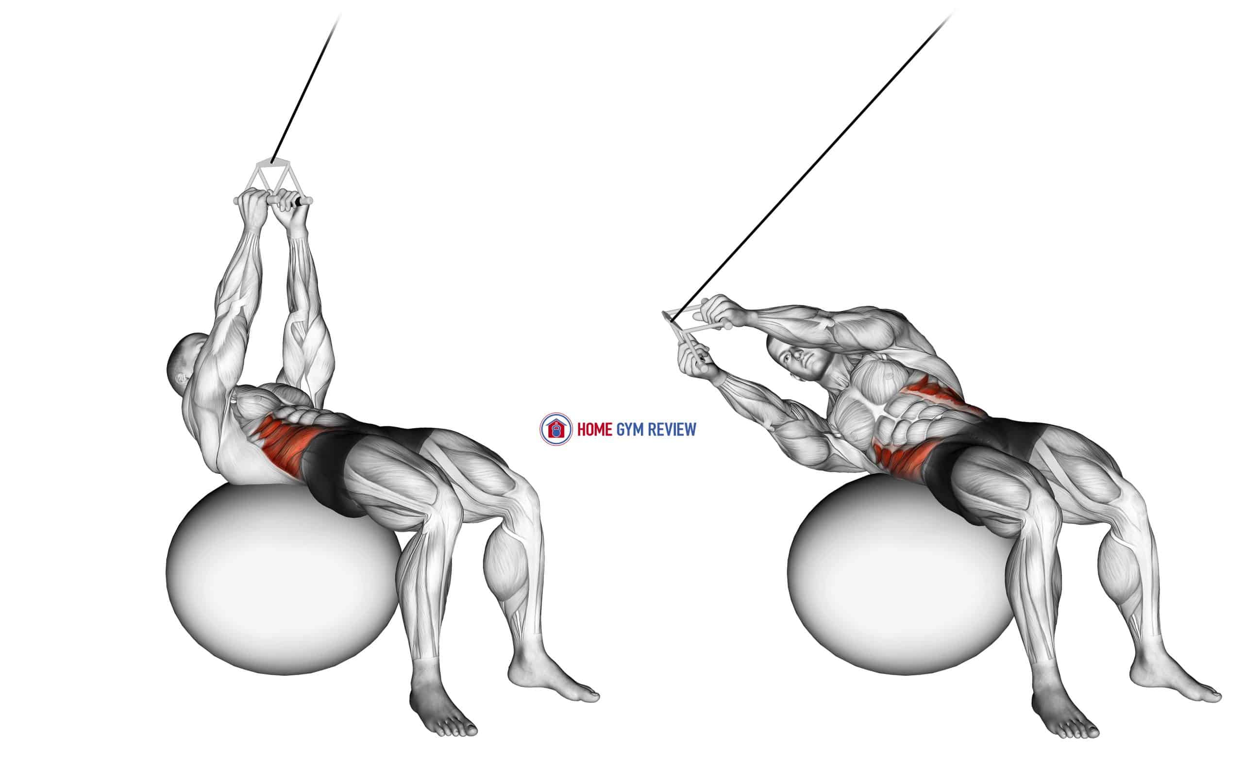 Cable Russian Twists (on stability ball)