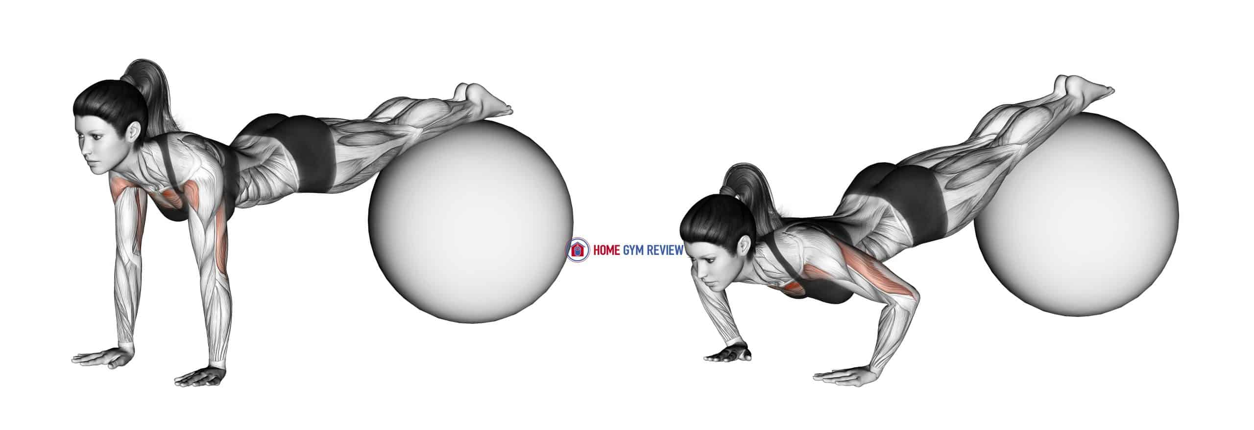 Decline Push-up (on stability ball)