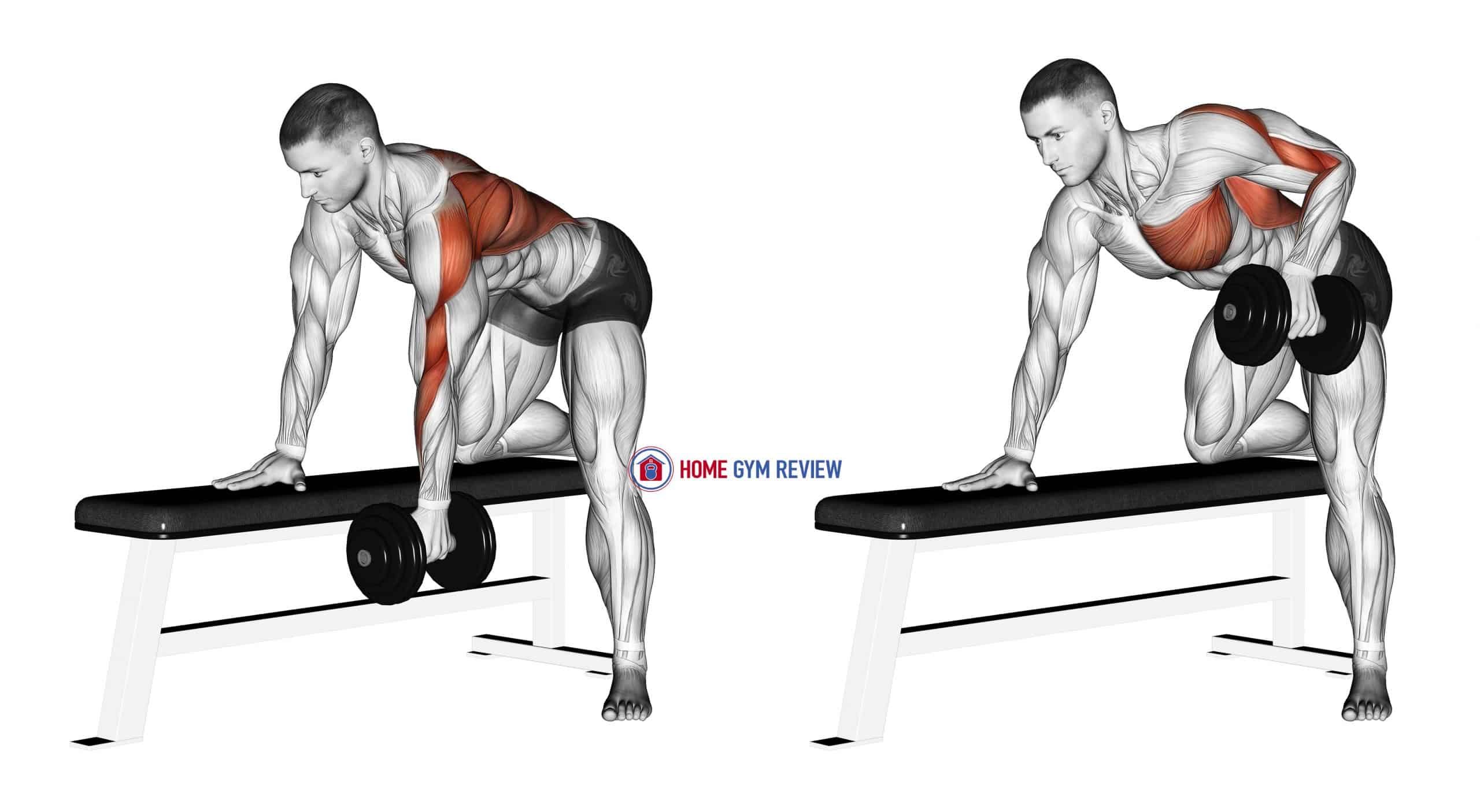 Dumbbell One Arm Bent-over Row