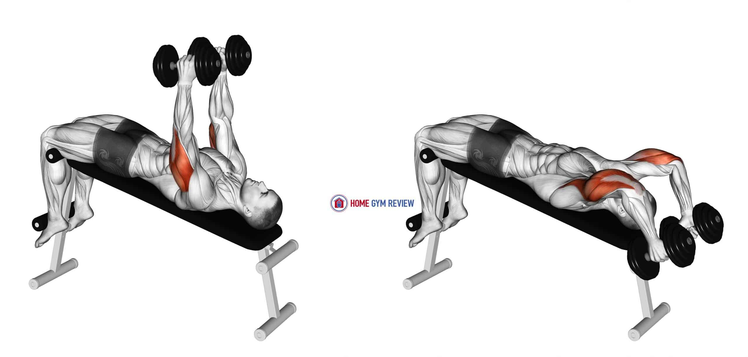 Dumbbell Decline Triceps Extension