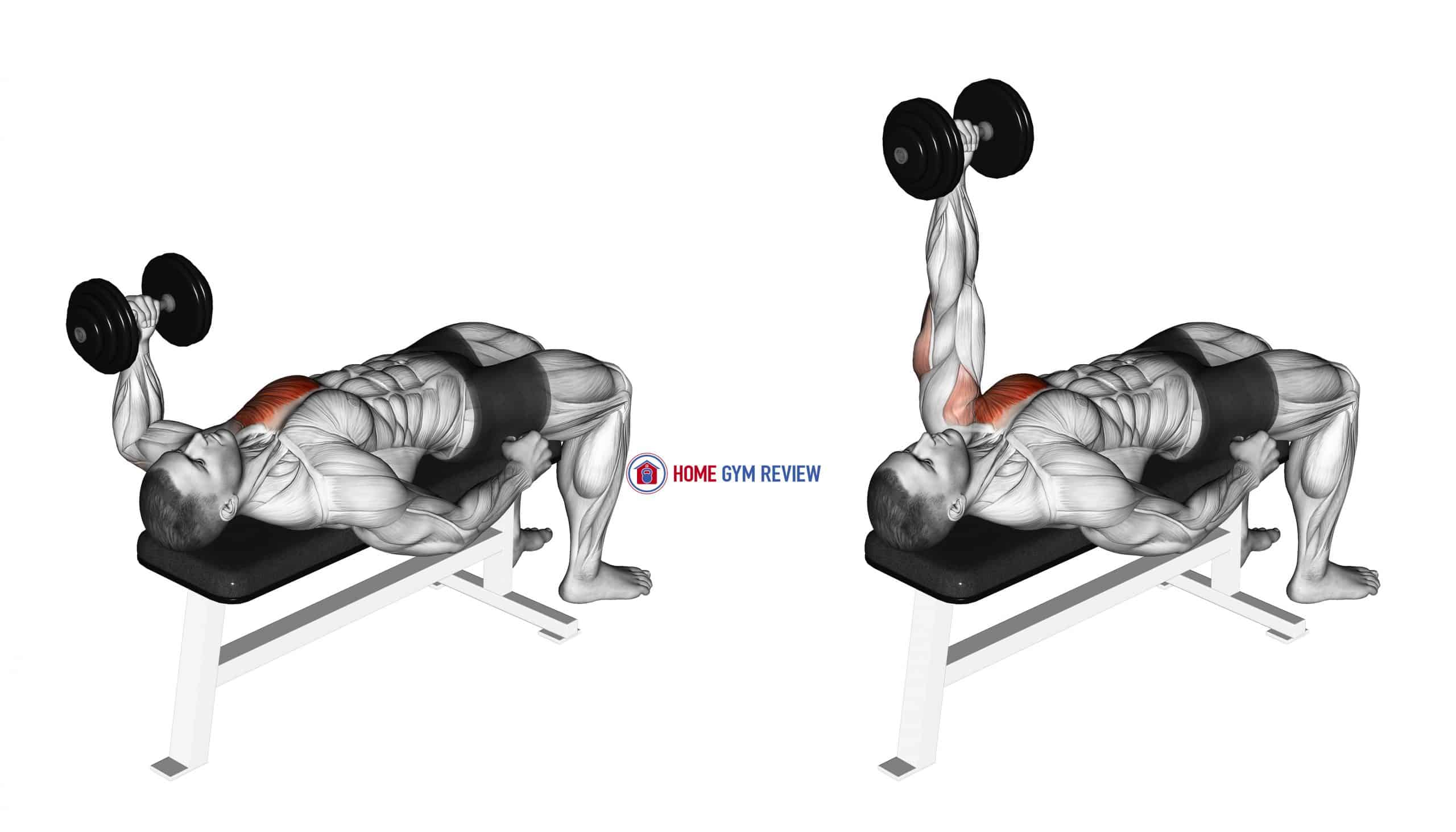 Dumbbell Lying One Arm Press (version 2)