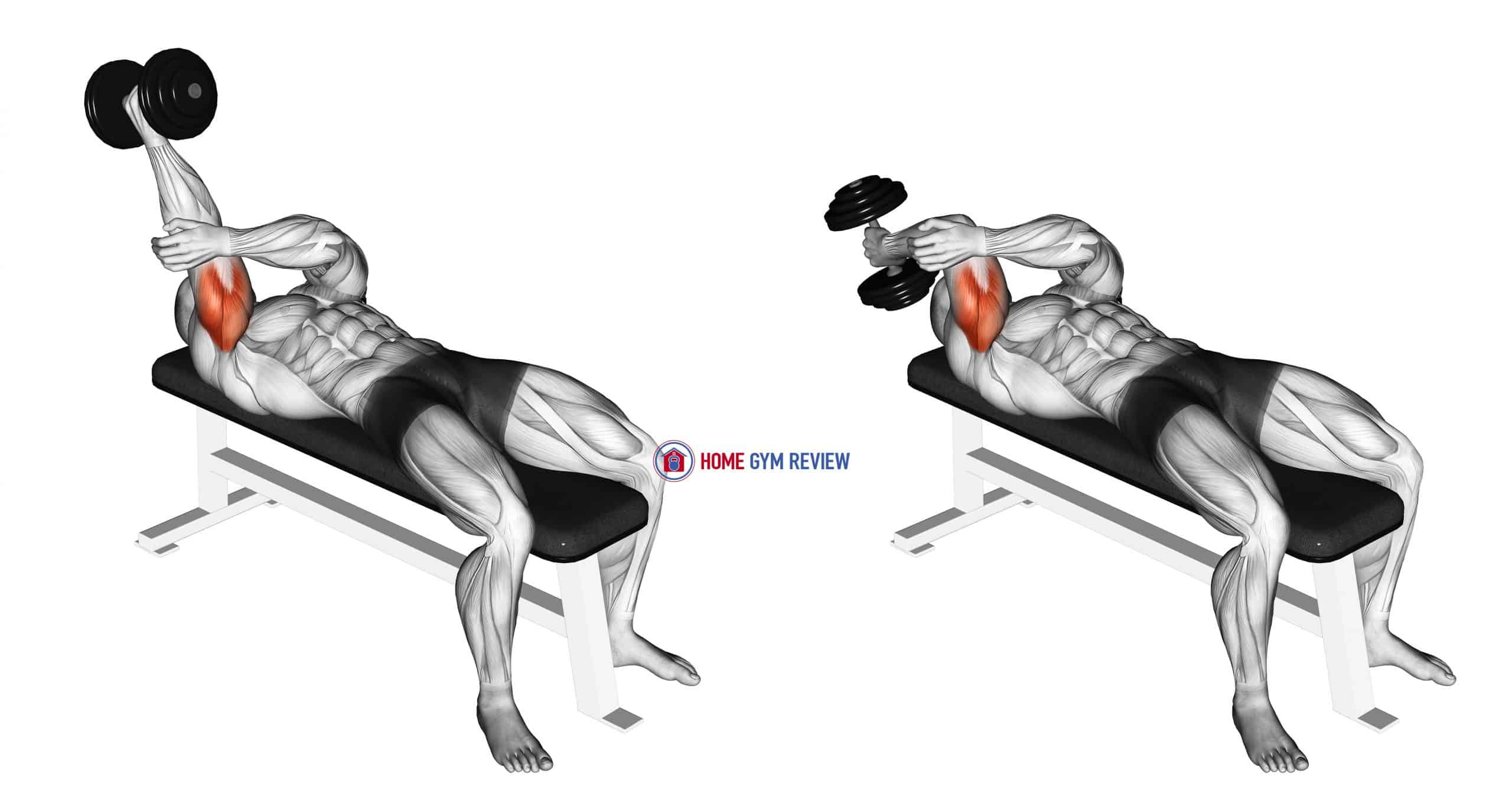 Dumbbell Lying One Arm Supinated Triceps Extension