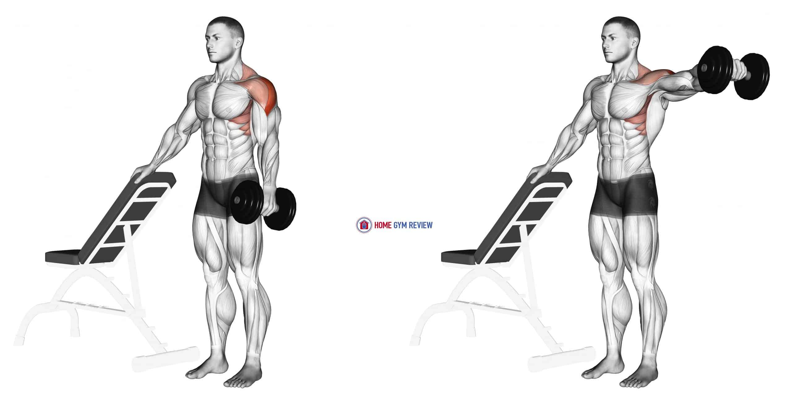 Dumbbell One Arm Lateral Raise with support