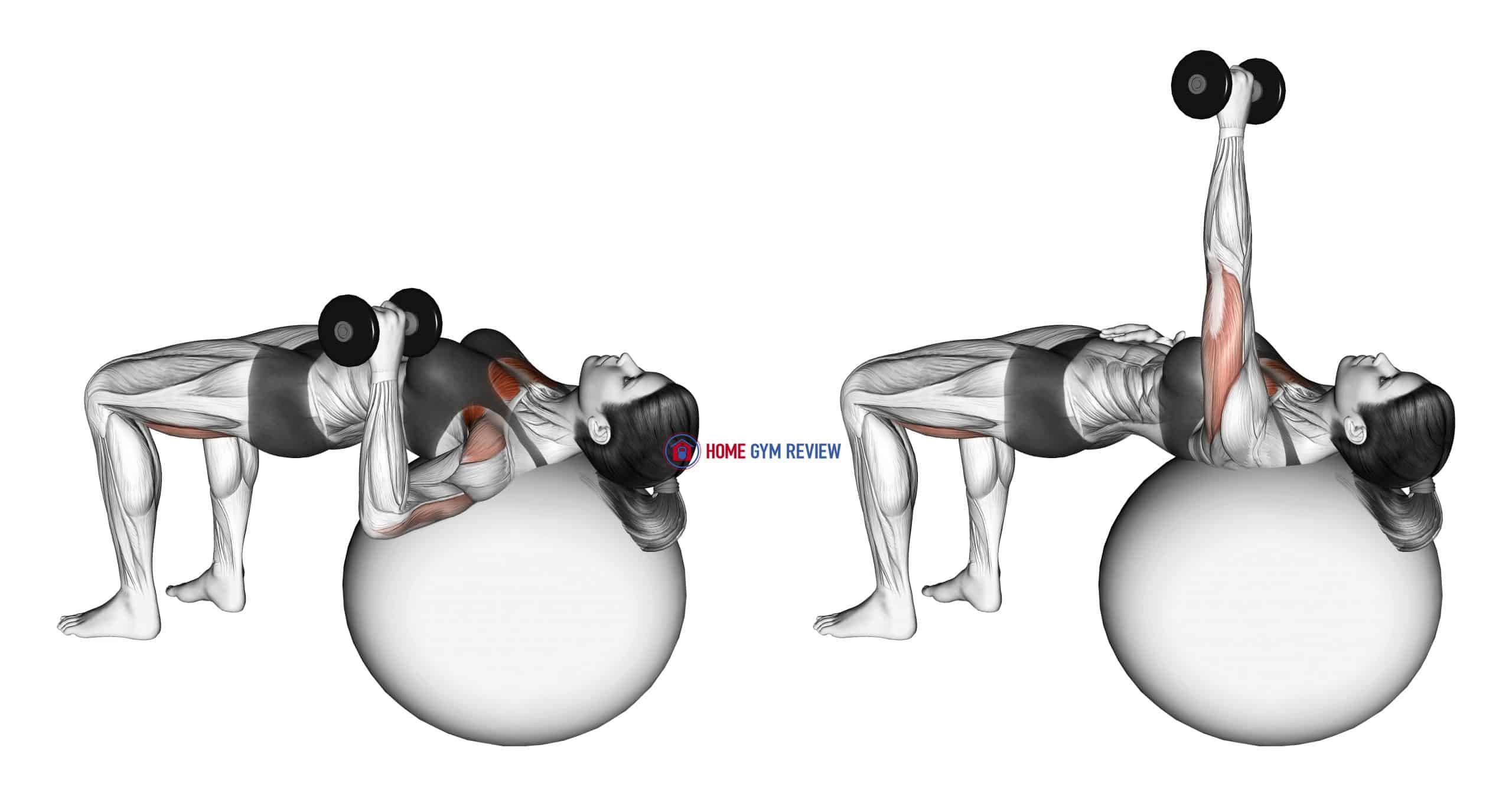 Dumbbell One Arm Press (on stability ball)