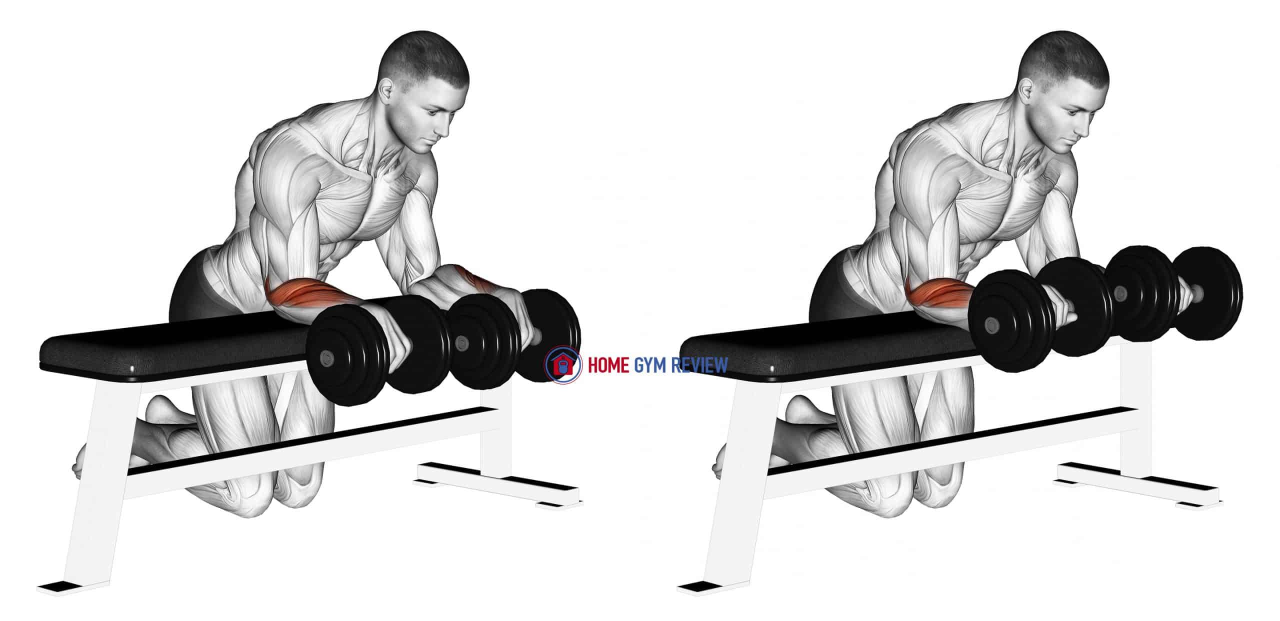 Dumbbell Over Bench Wrist Curl