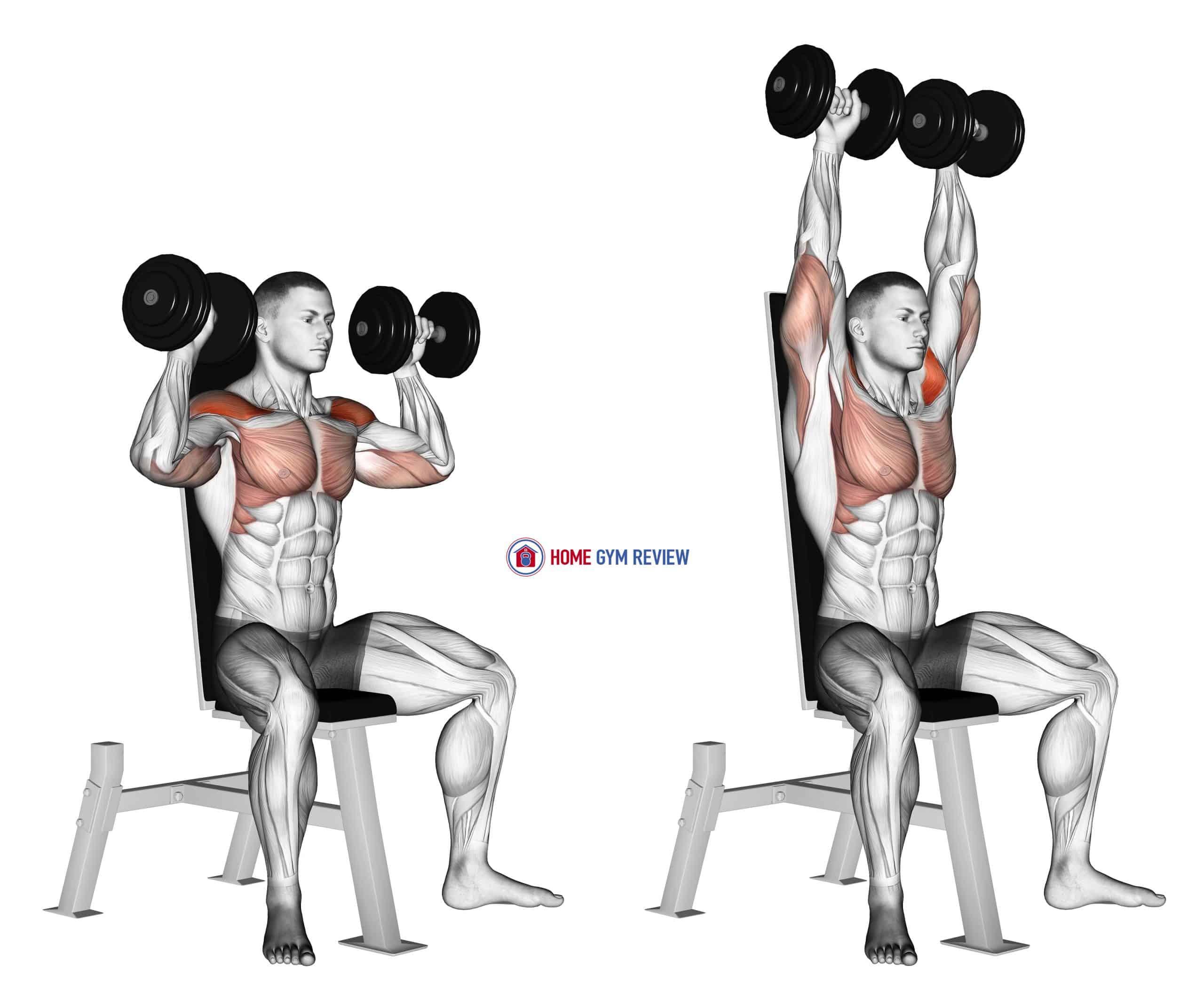 Dumbbell Seated Shoulder Press