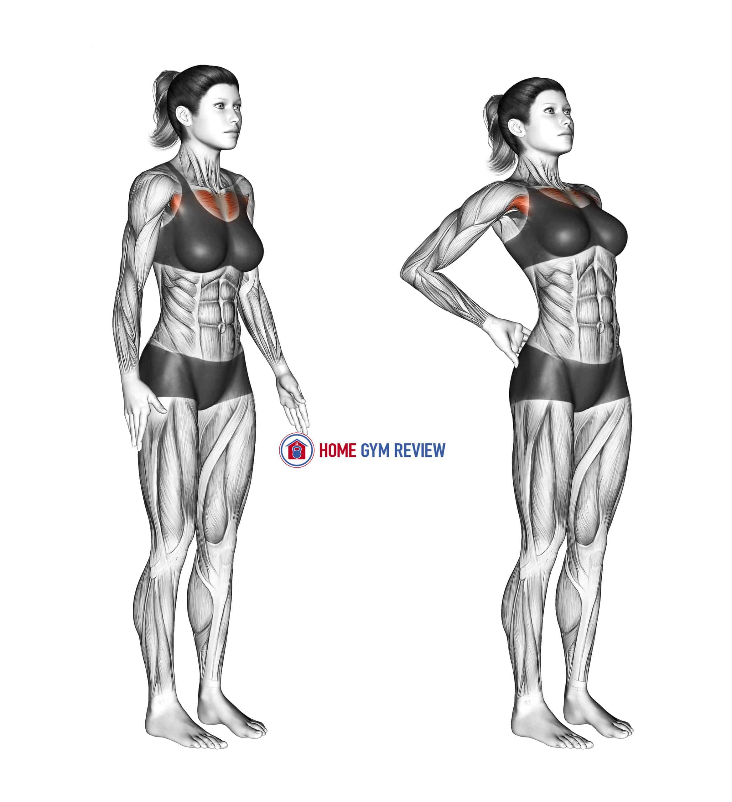 Elbows Back Stretch