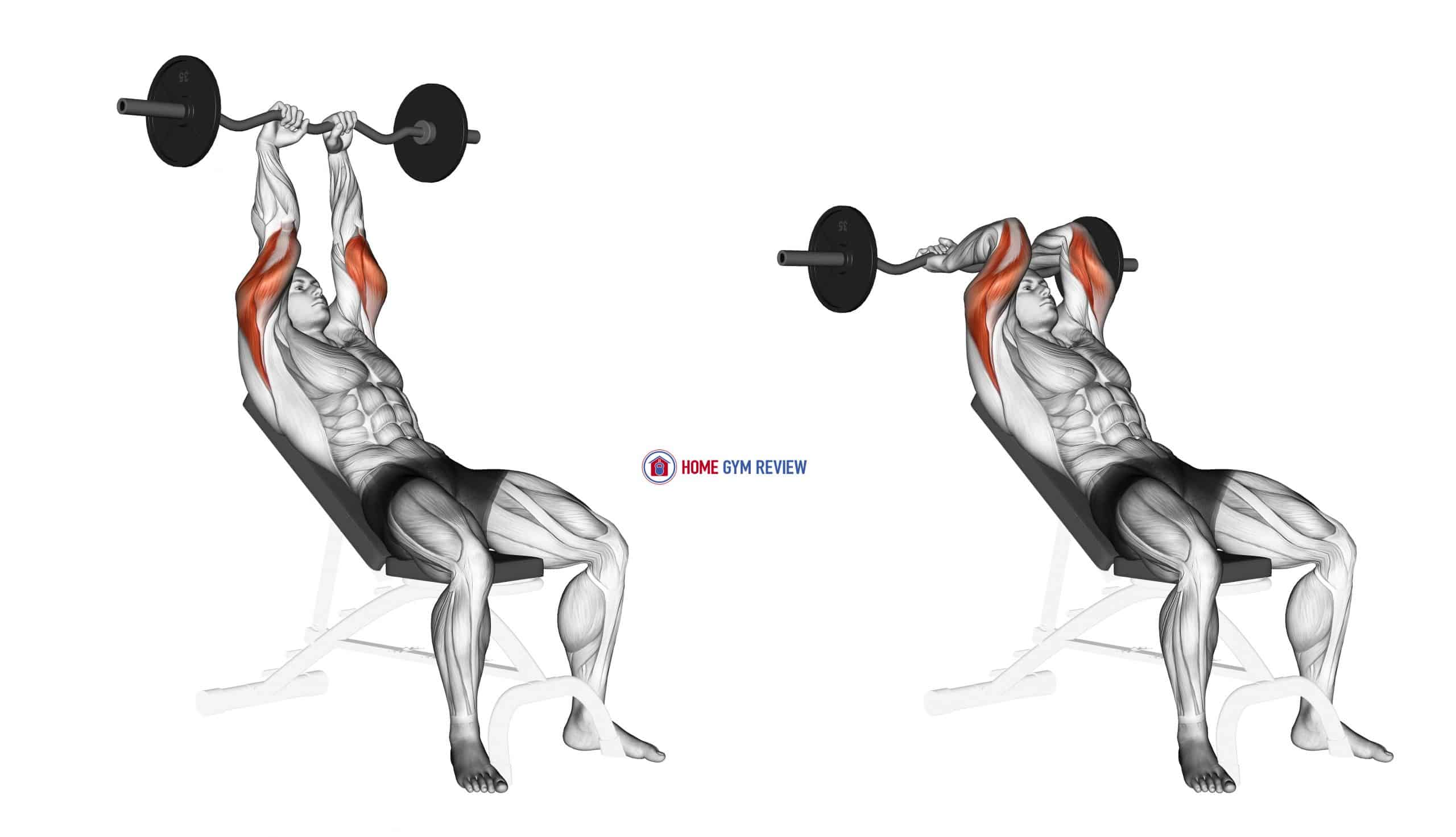 EZ Barbell Incline Triceps Extension