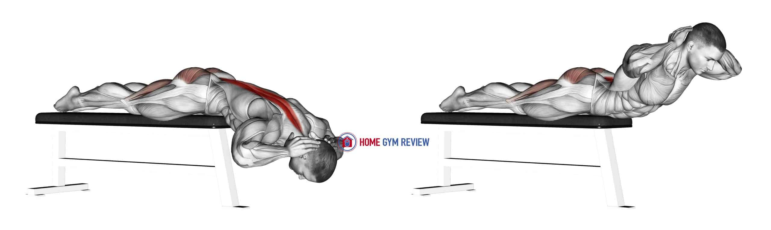 Hyperextension (on bench)