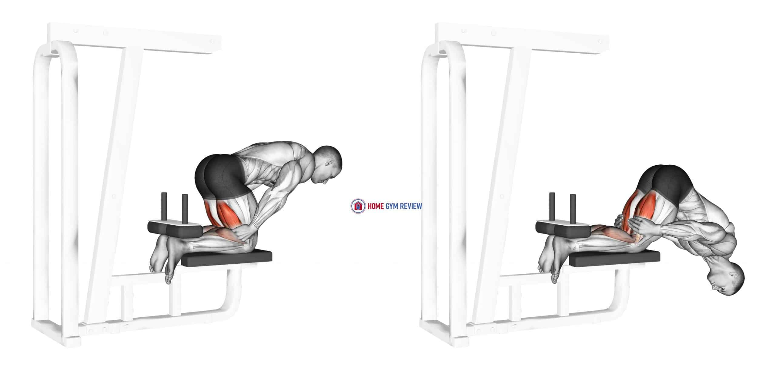 Inverse Leg Curl (bench support)