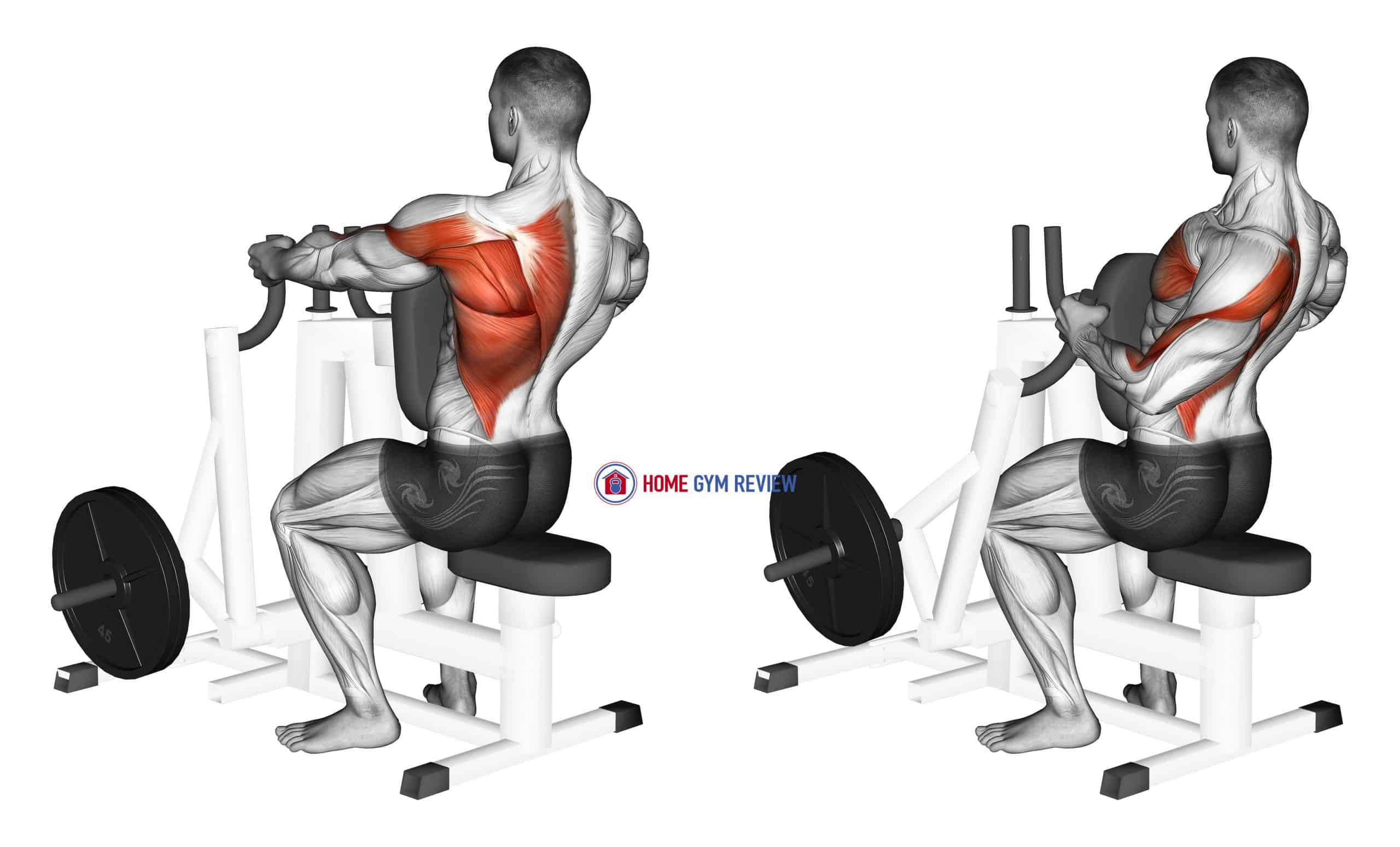 Lever Alternating Narrow Grip Seated Row (plate loaded)