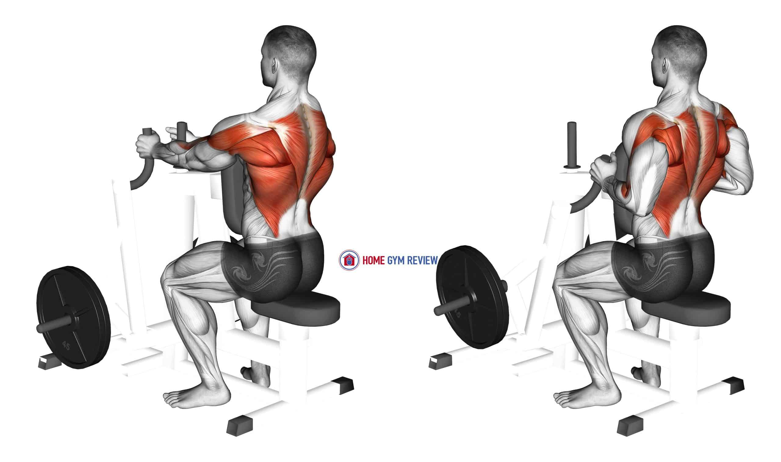 Lever Narrow Grip Seated Row (plate loaded)