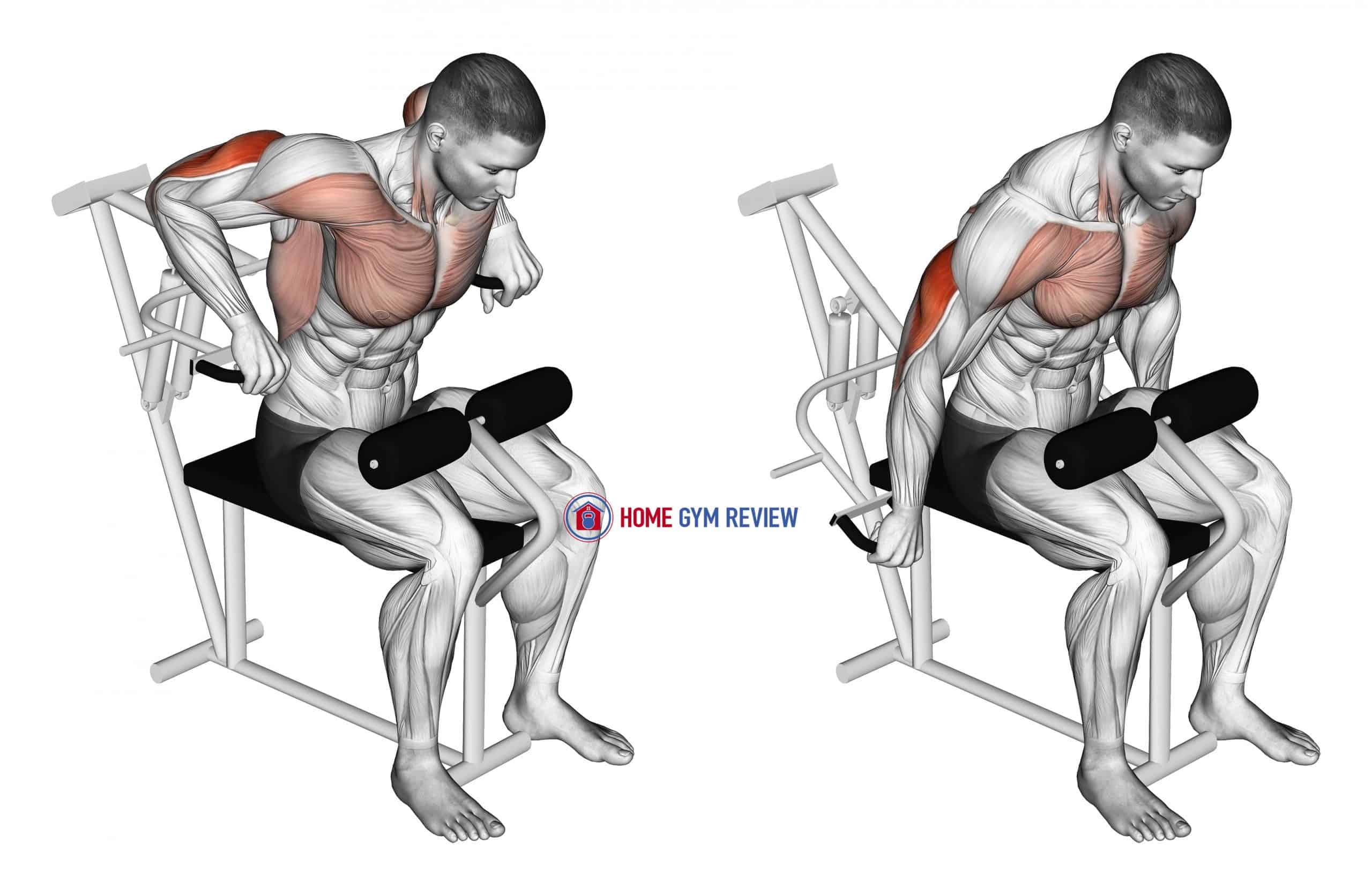 Lever Overhand Triceps Dip