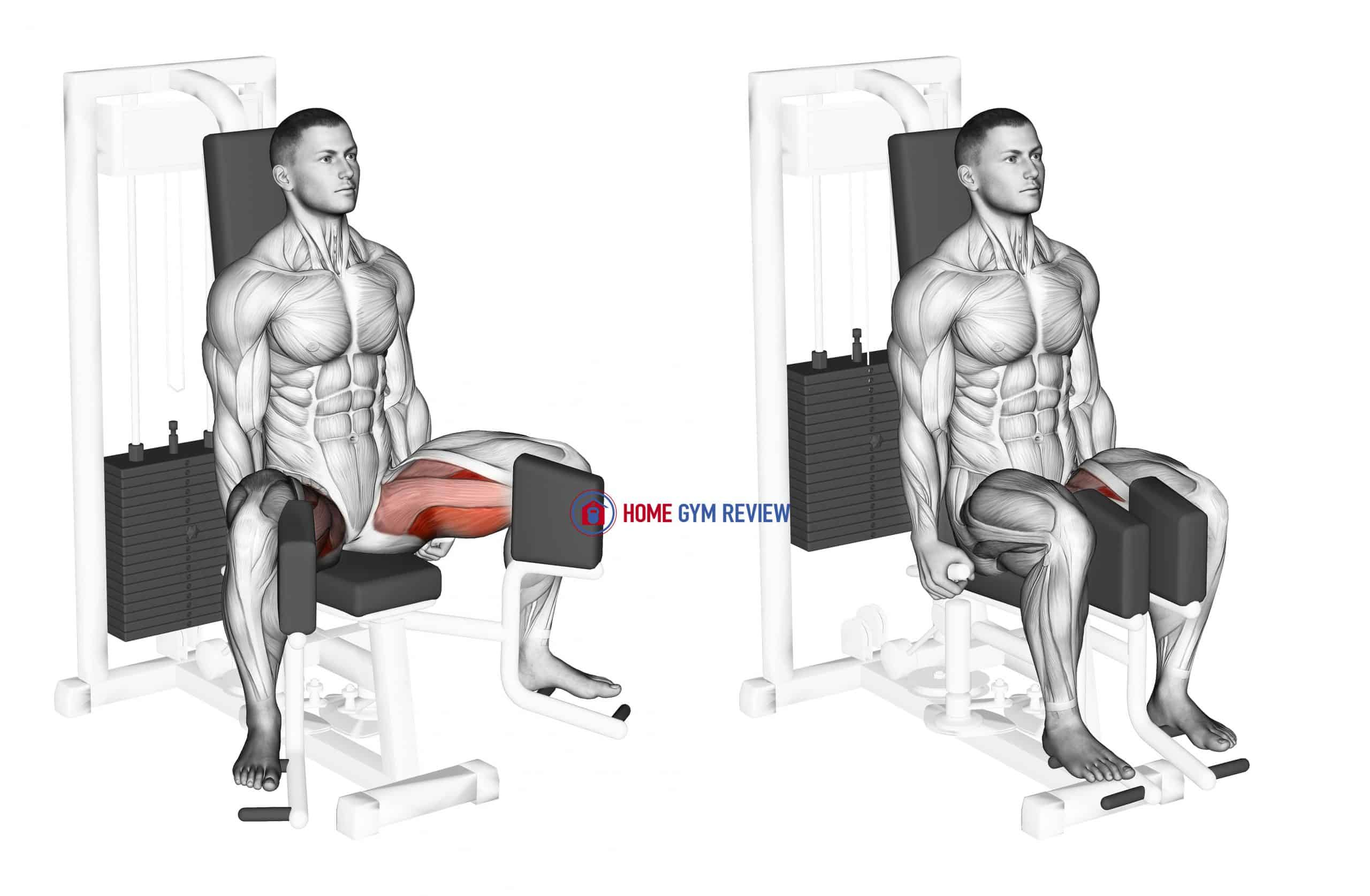 Lever Seated Hip Adduction