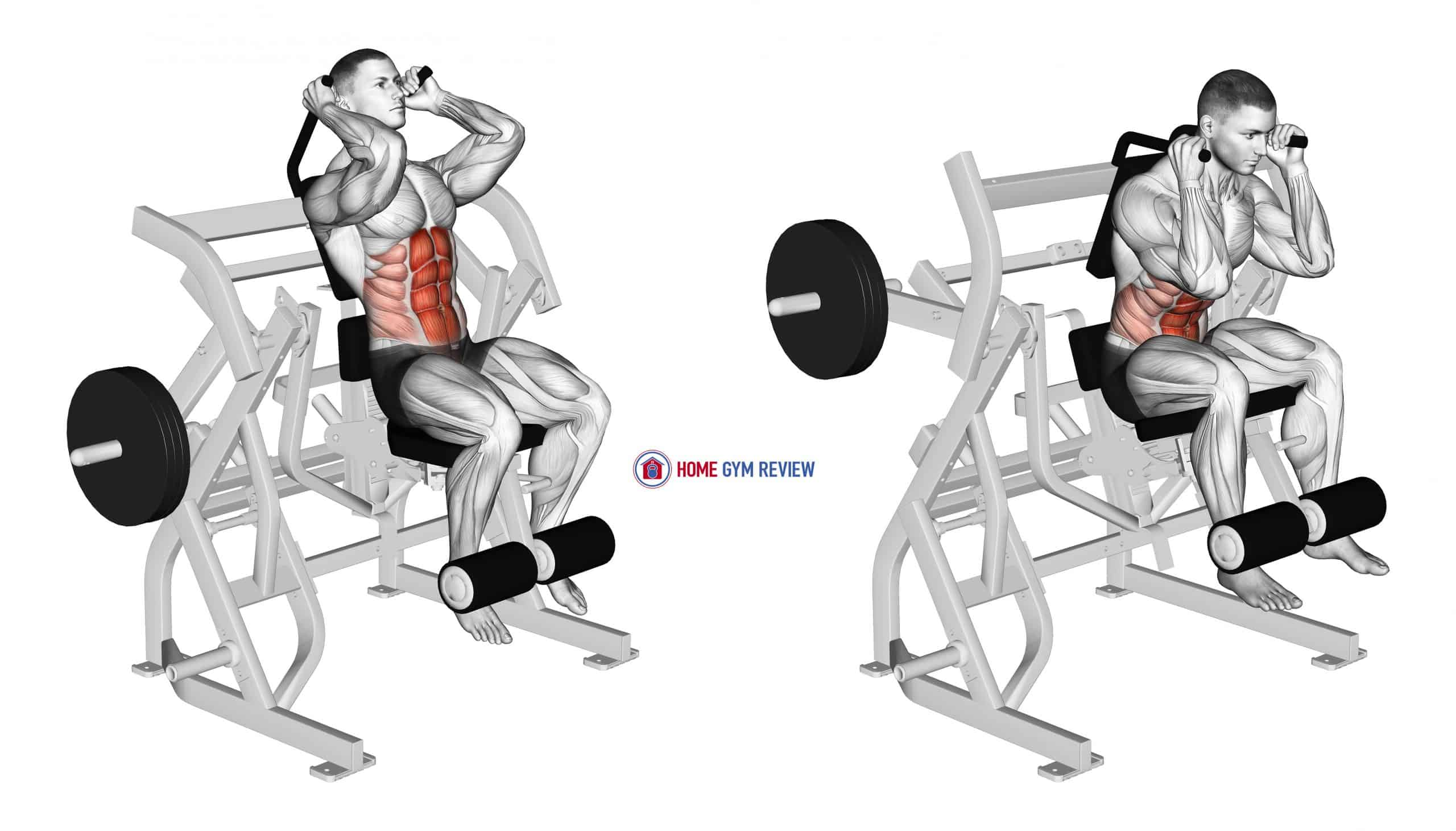 Lever Seated Leg Raise Crunch (plate loaded)