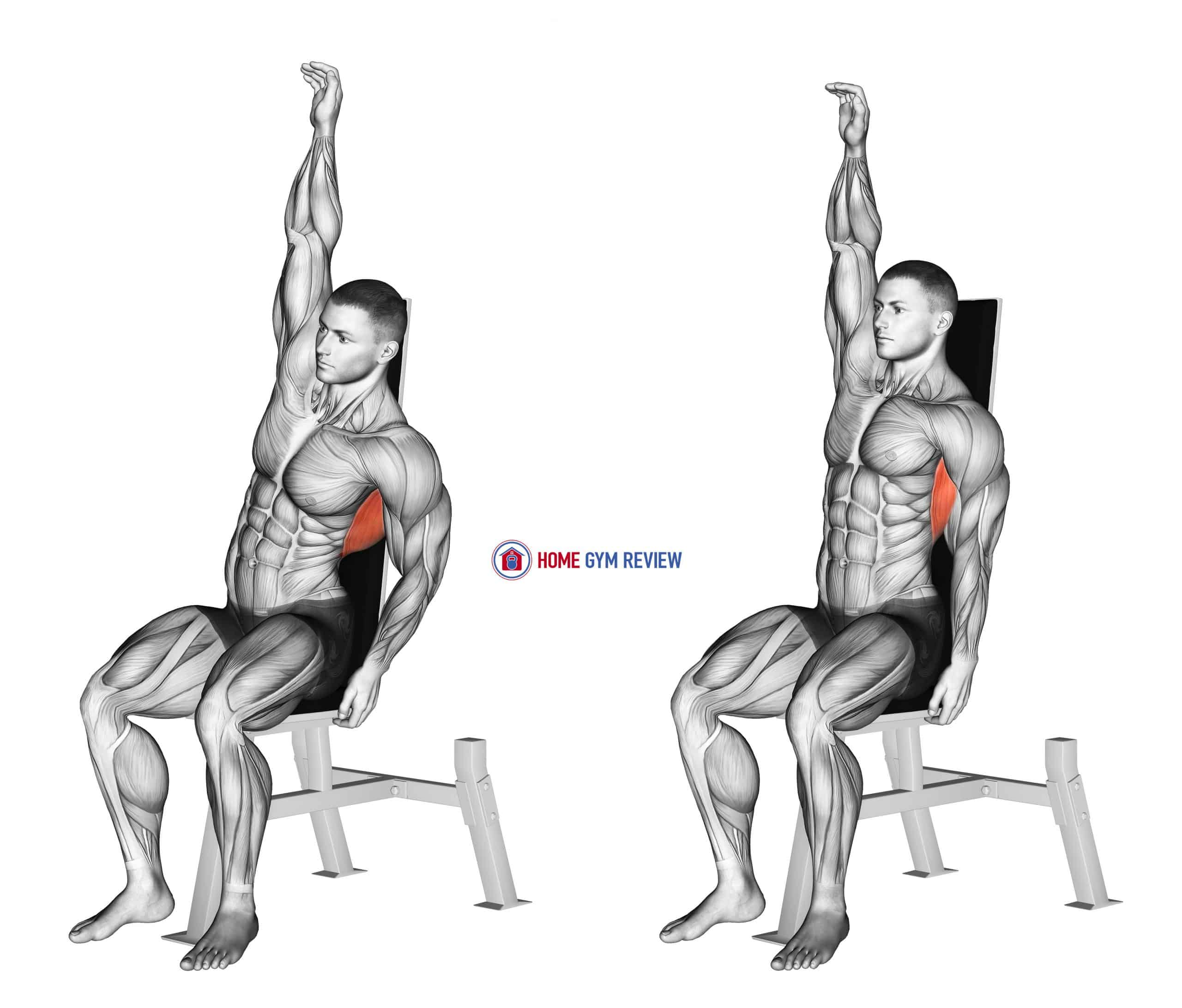 Seated Lower Back Stretch