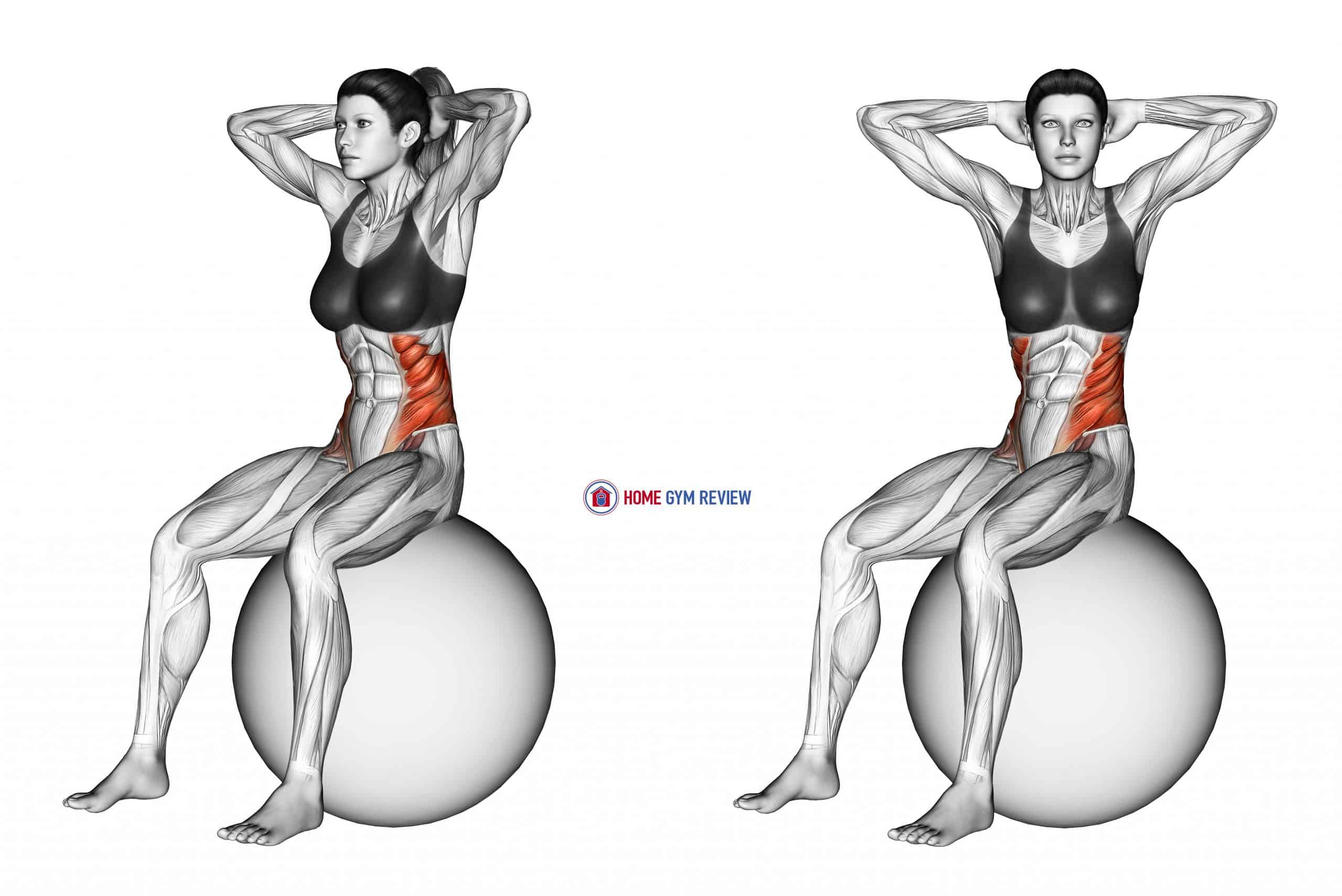 Seated Twist (on stability ball)