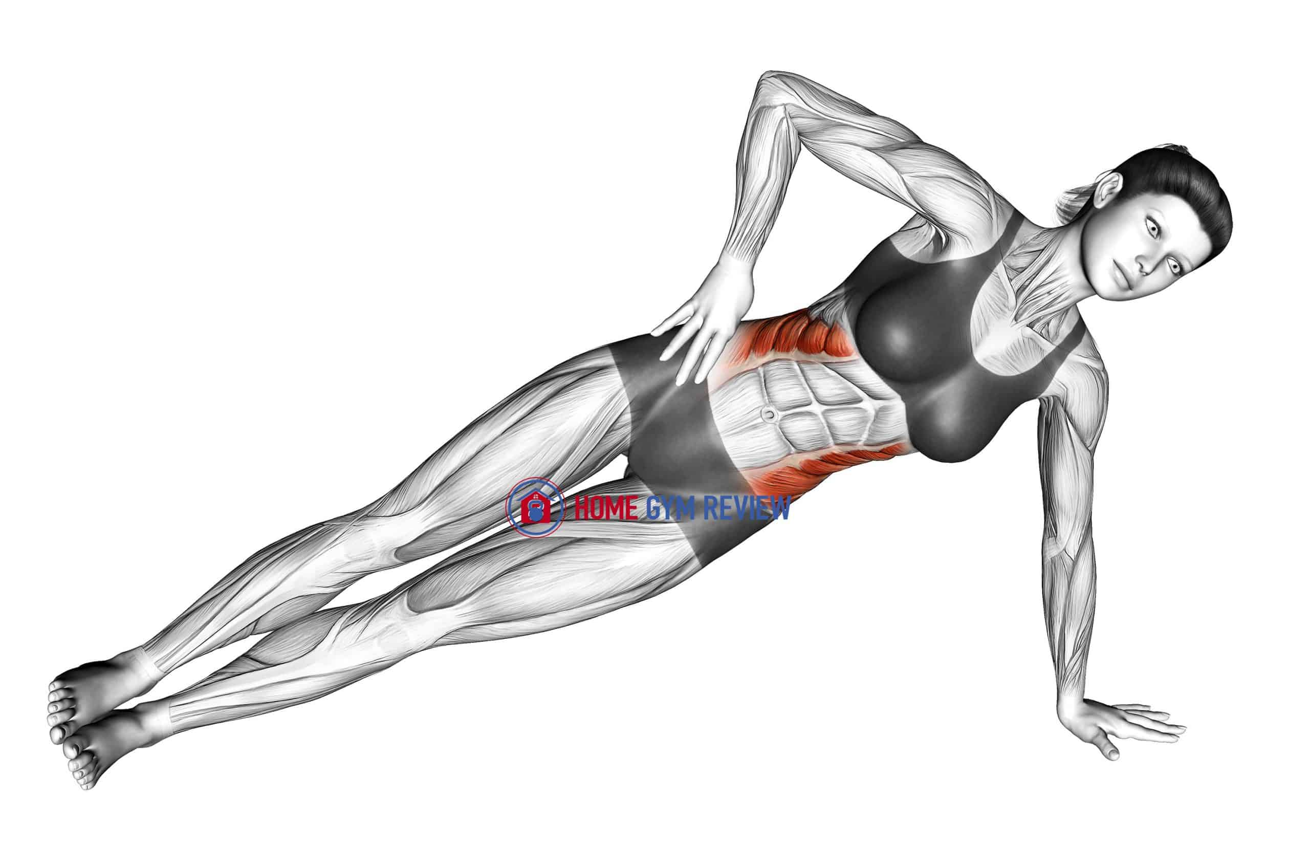 Side Plank (version 2)