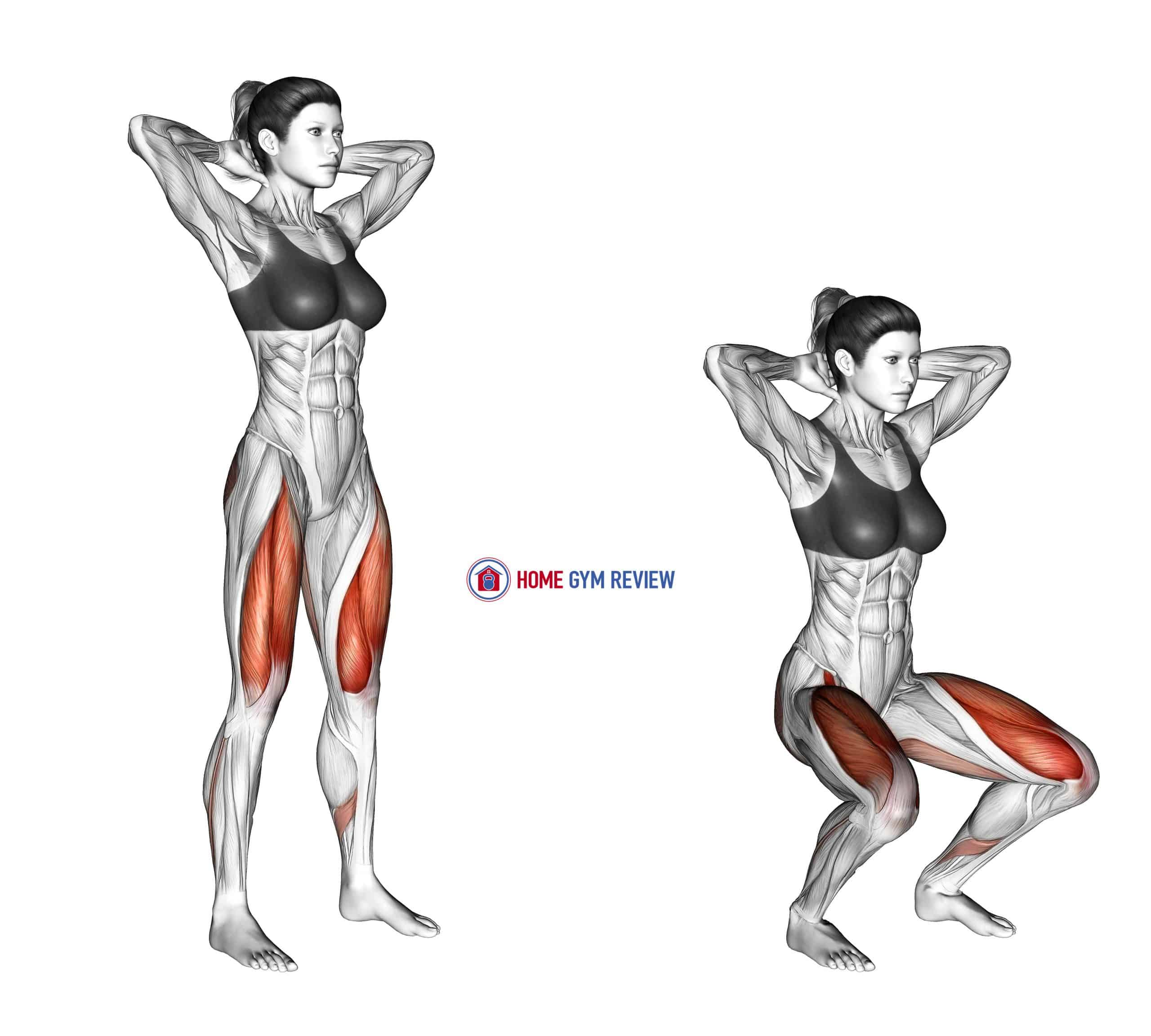 Squat (arms overhead)