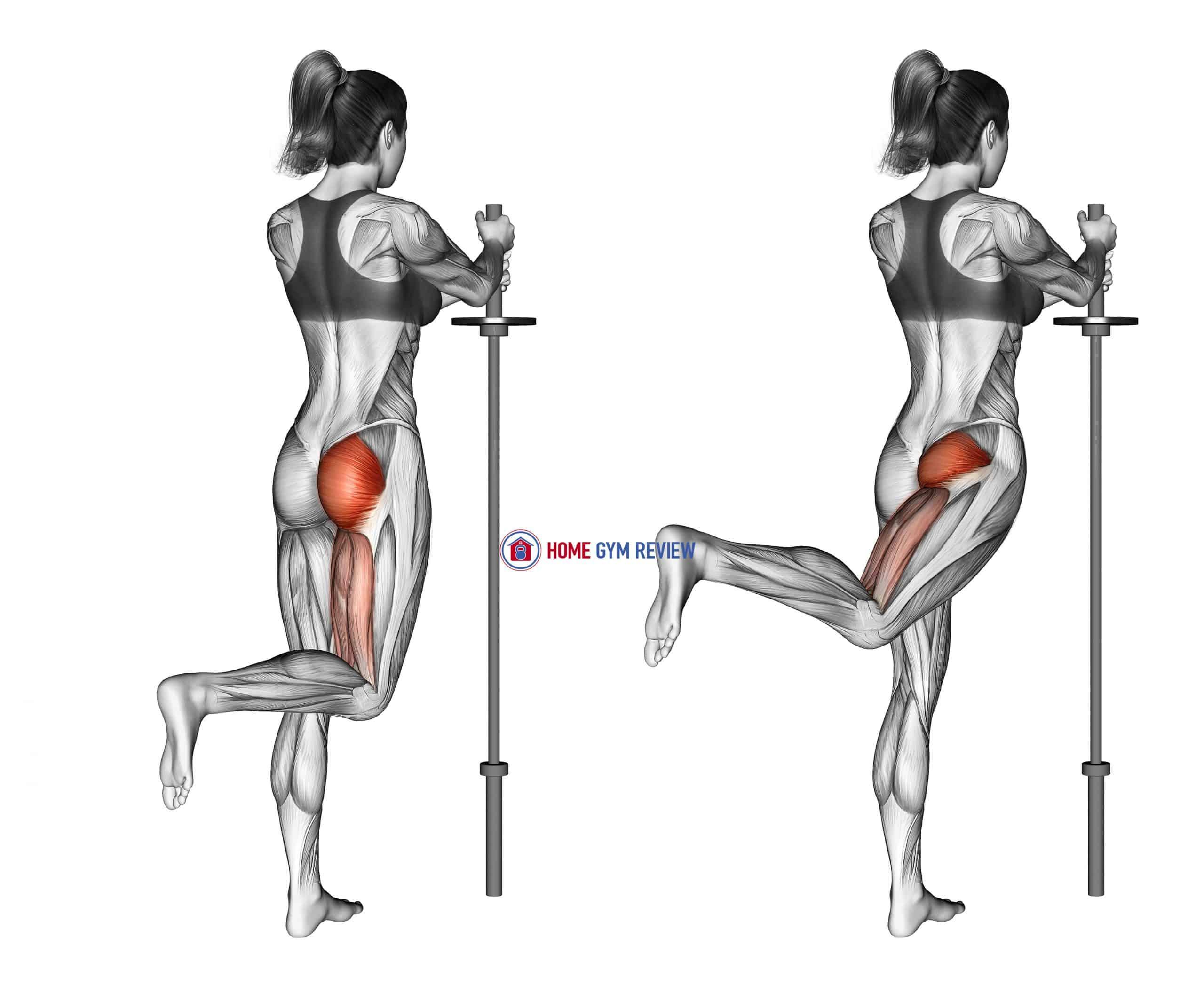 Standing Hip Extension (bent knee)