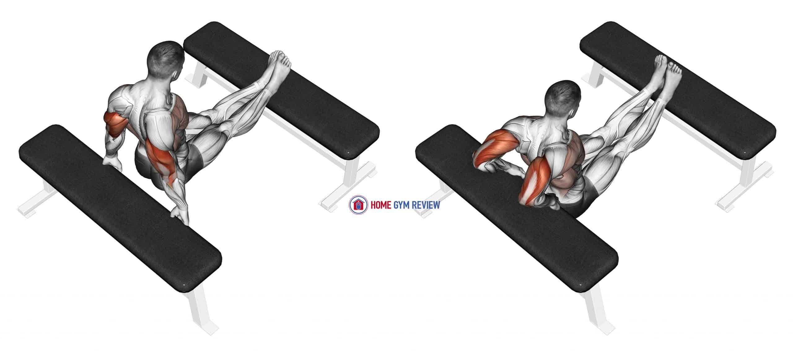 Triceps Dip (bench leg)