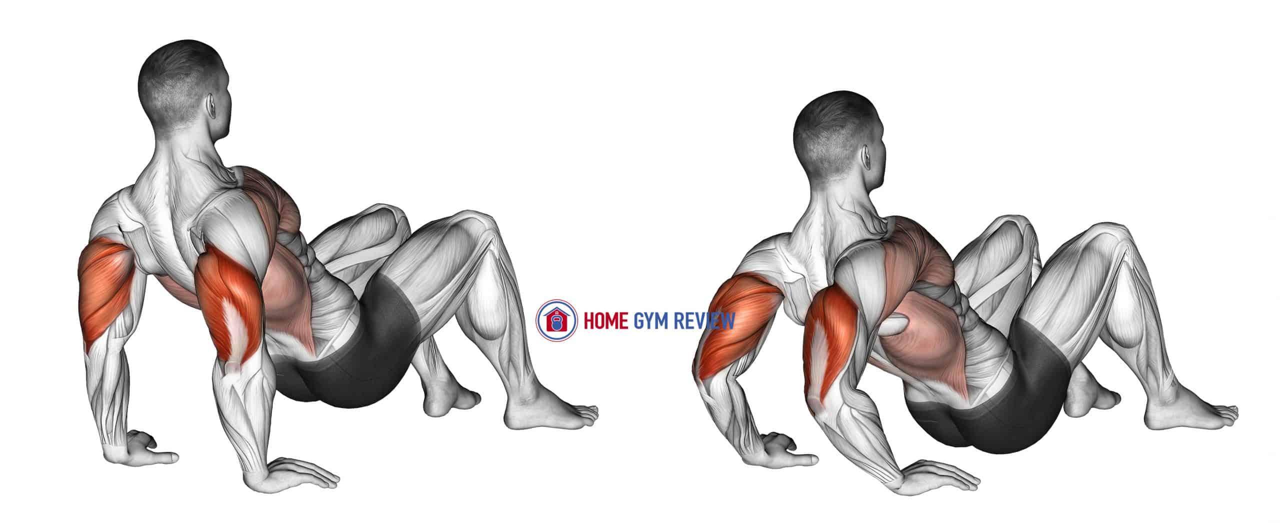 Triceps Dips Floor