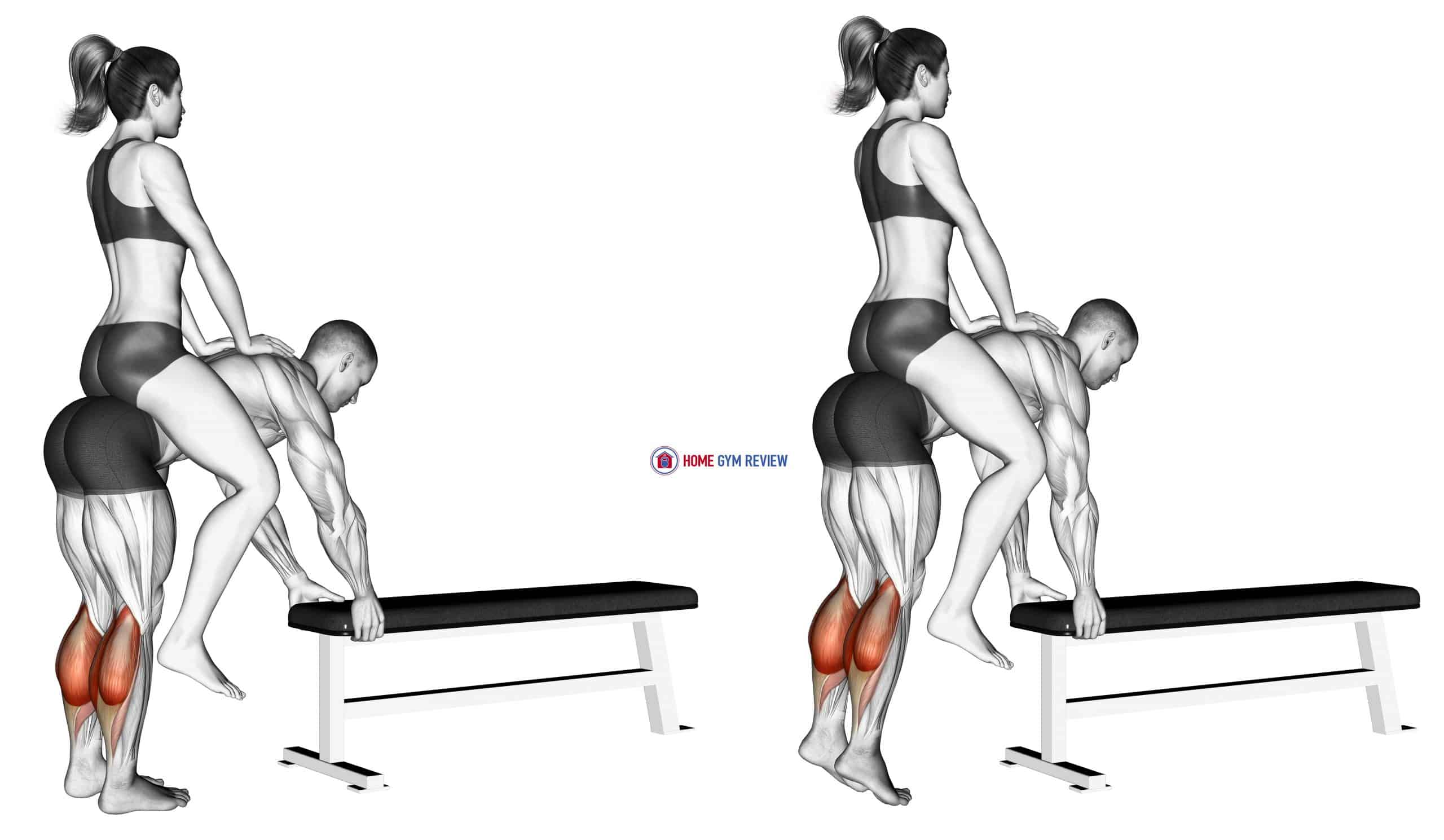 Weighted Donkey Calf Raise