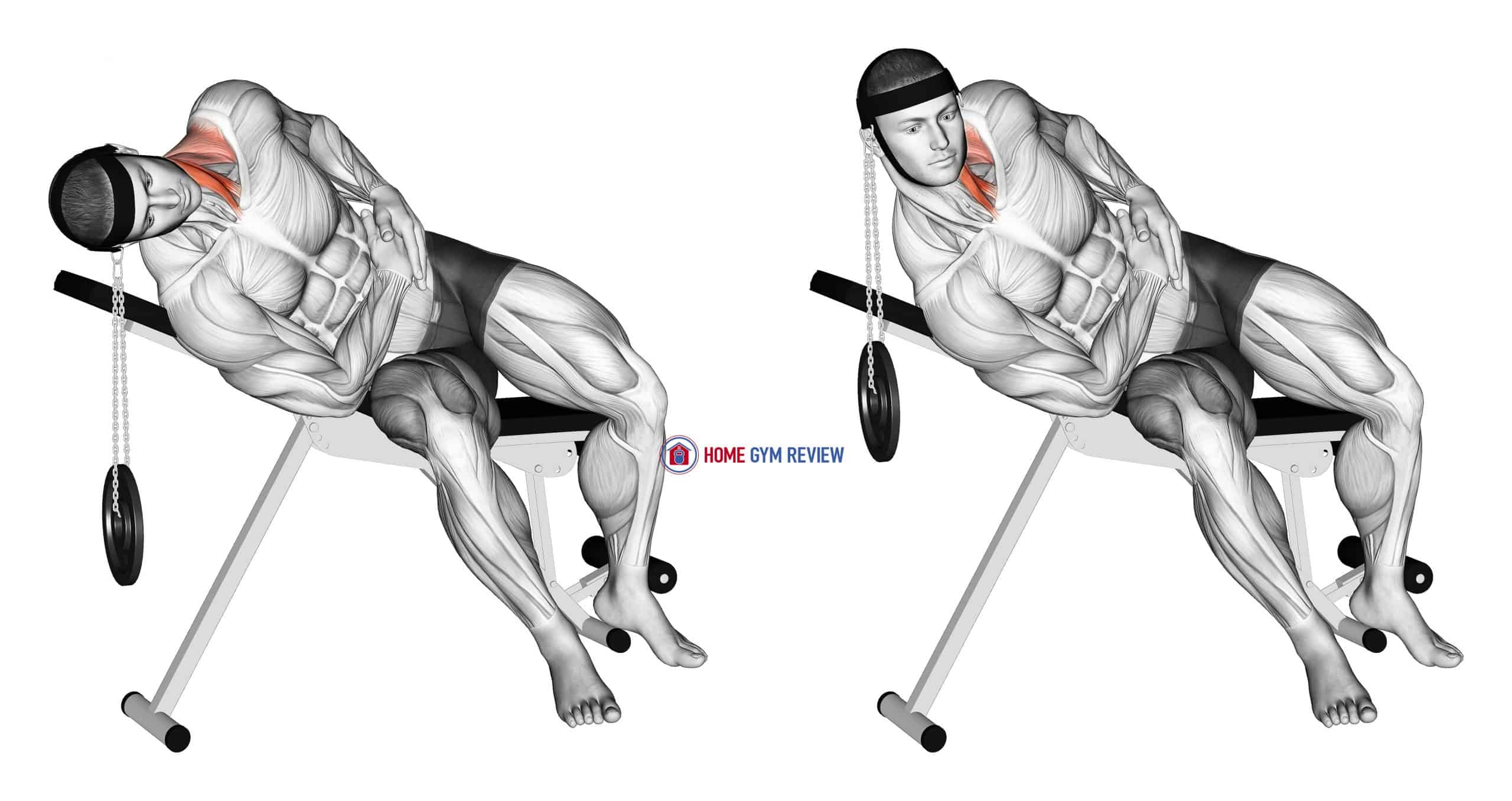 Weighted Lying Side Lifting Head (with head harness)