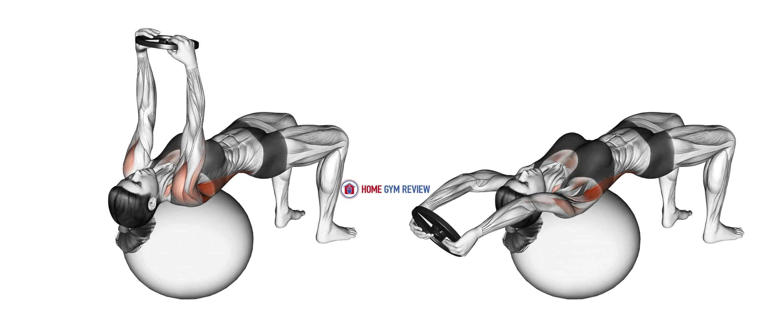 Weighted Pullover (on stability ball)