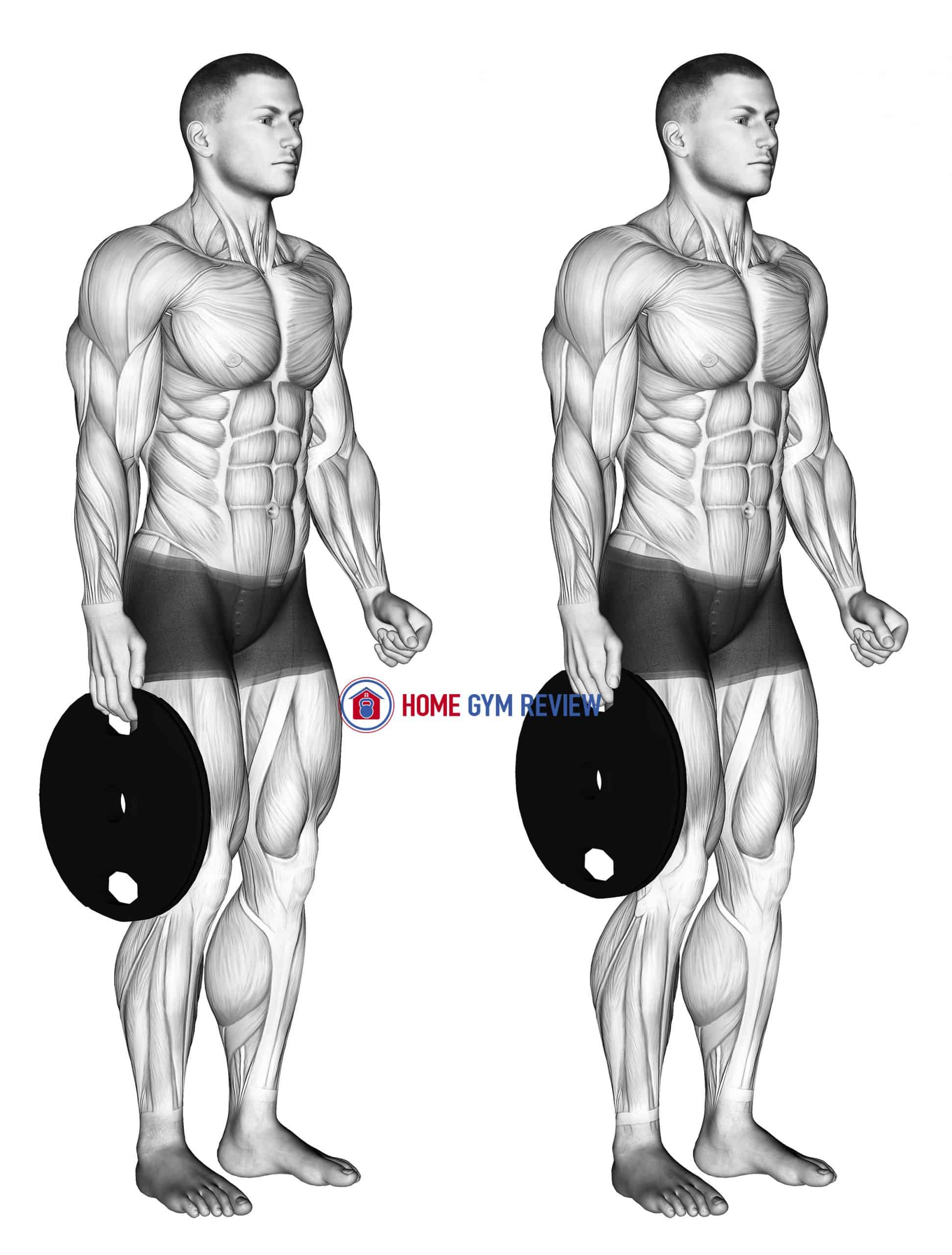 Weighted Standing Hand Squeeze